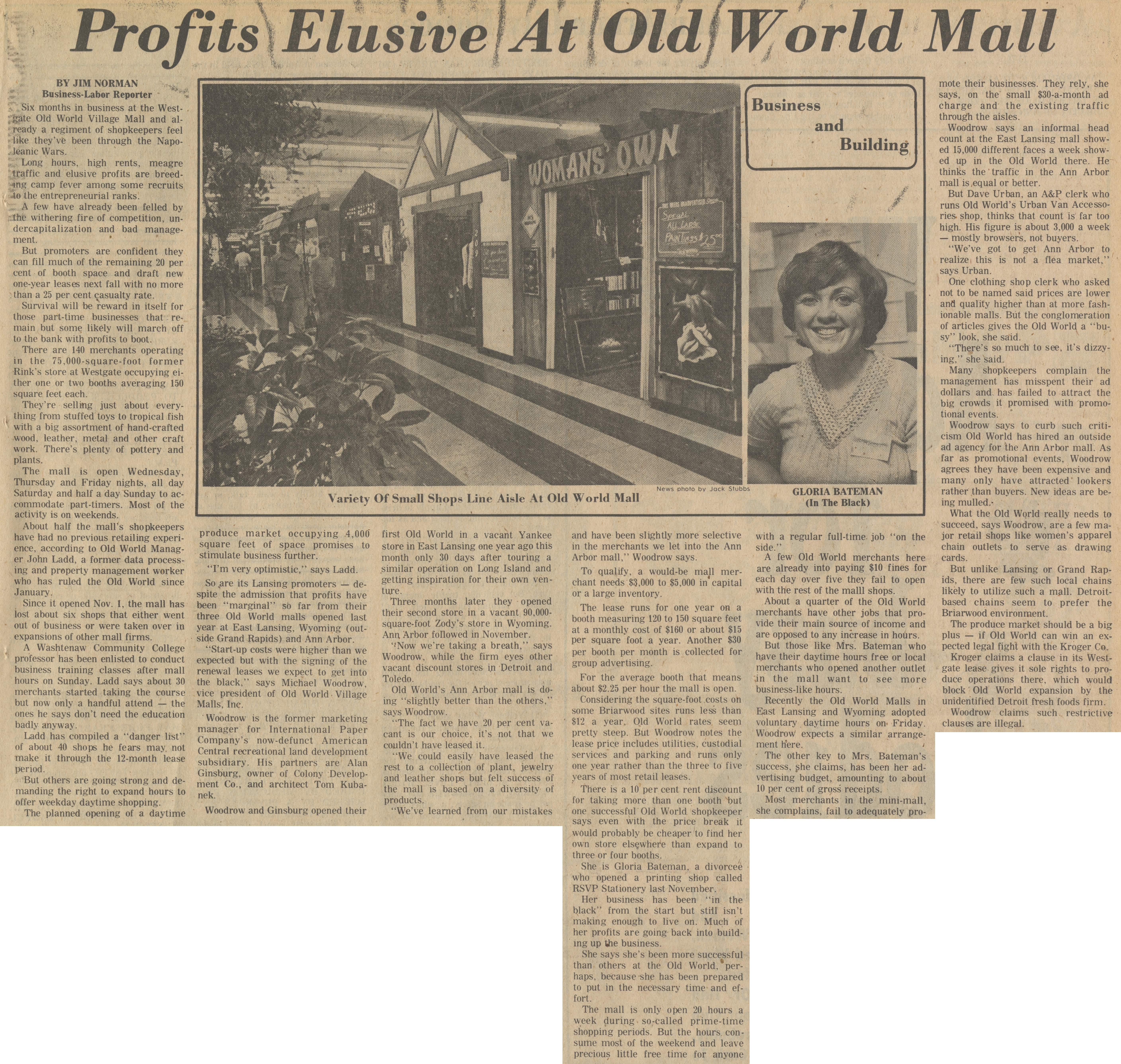Profits Elusive At Old World Mall image