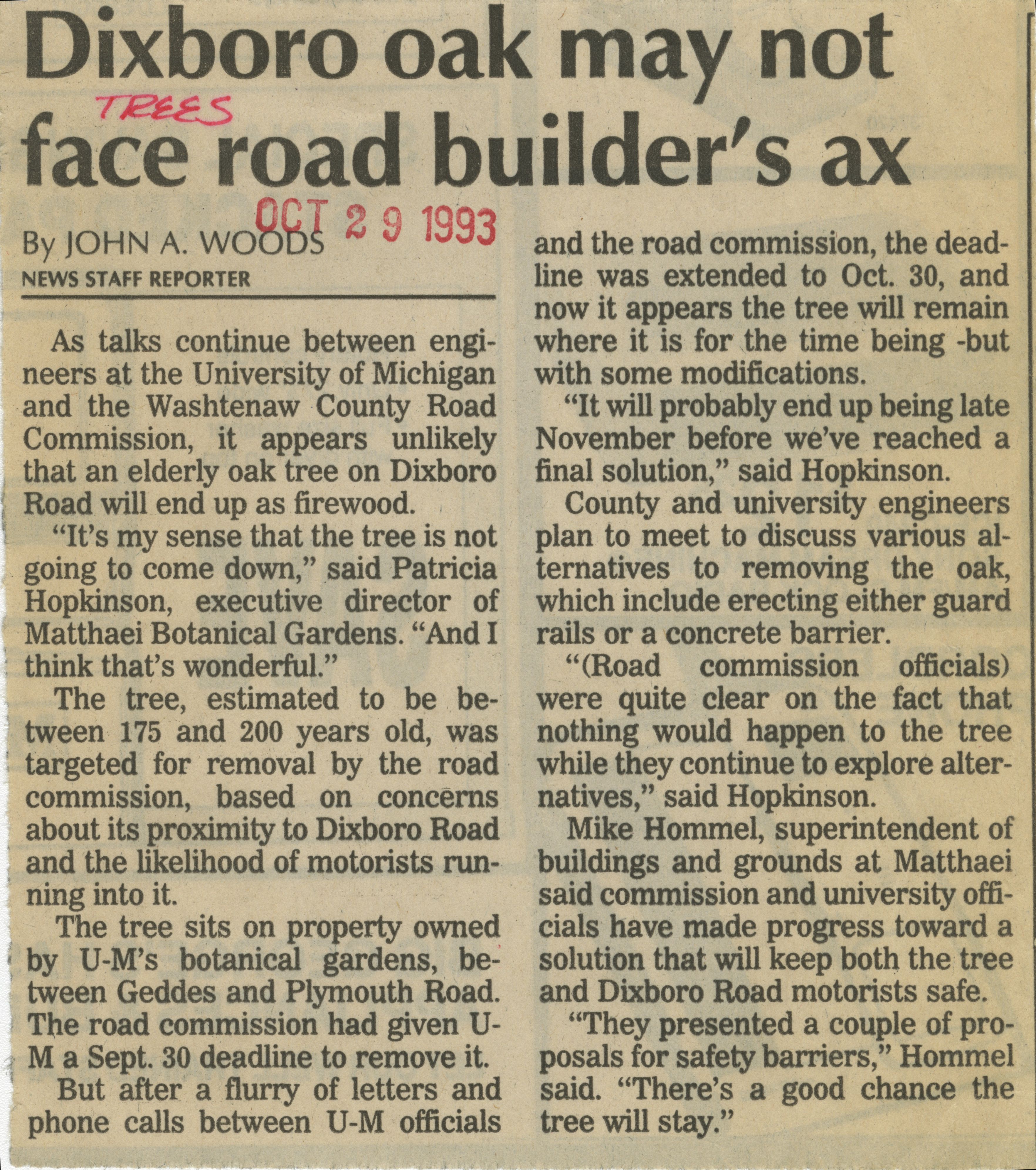 Dixboro oak may not face road builder's ax image