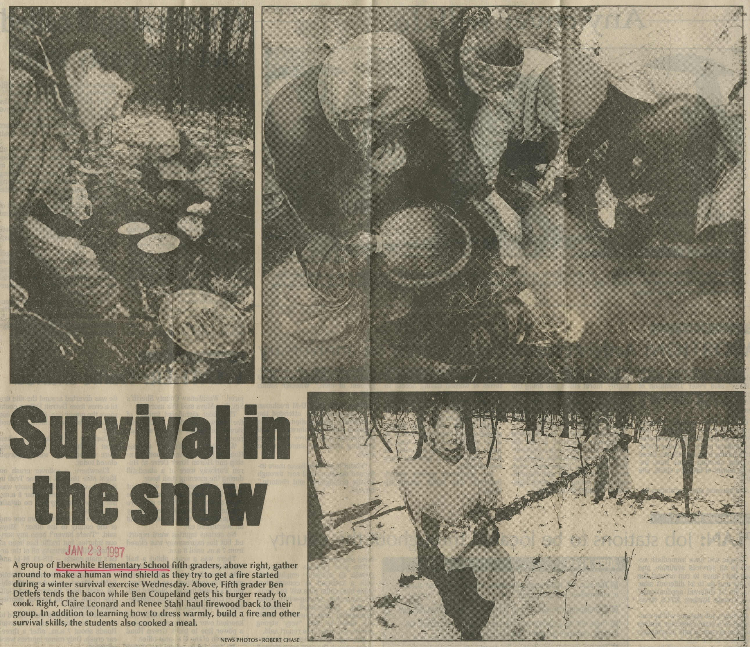Survival In The Snow image