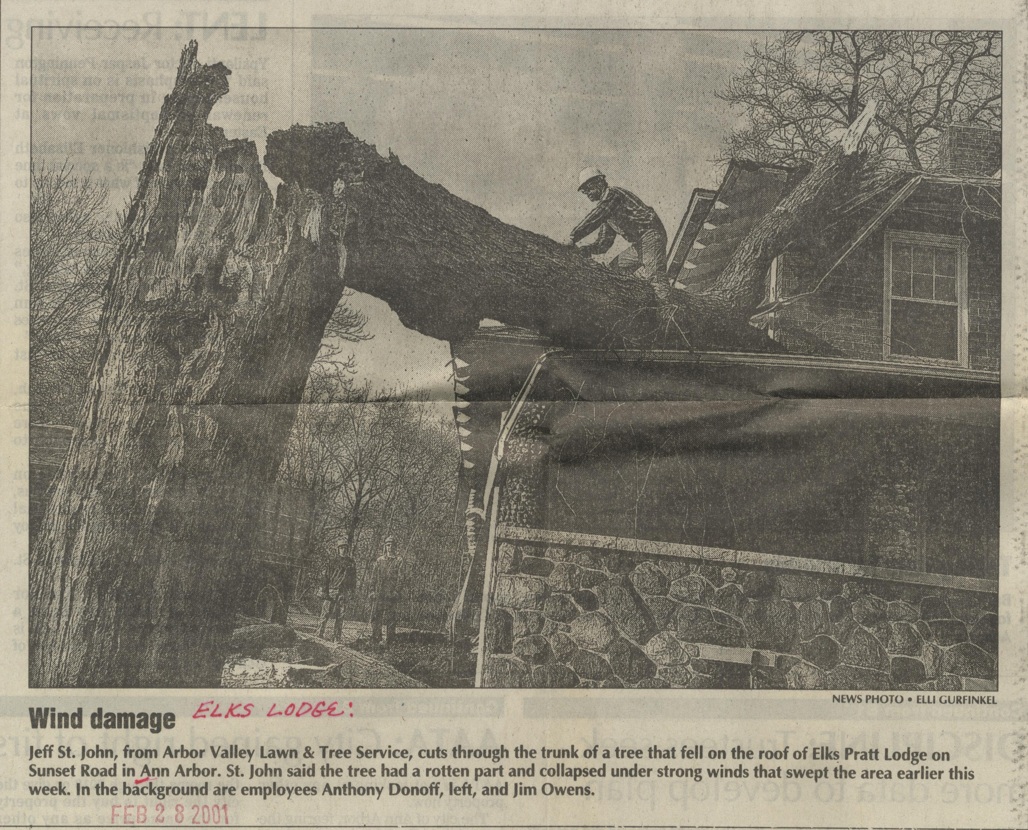 Wind Damage Image