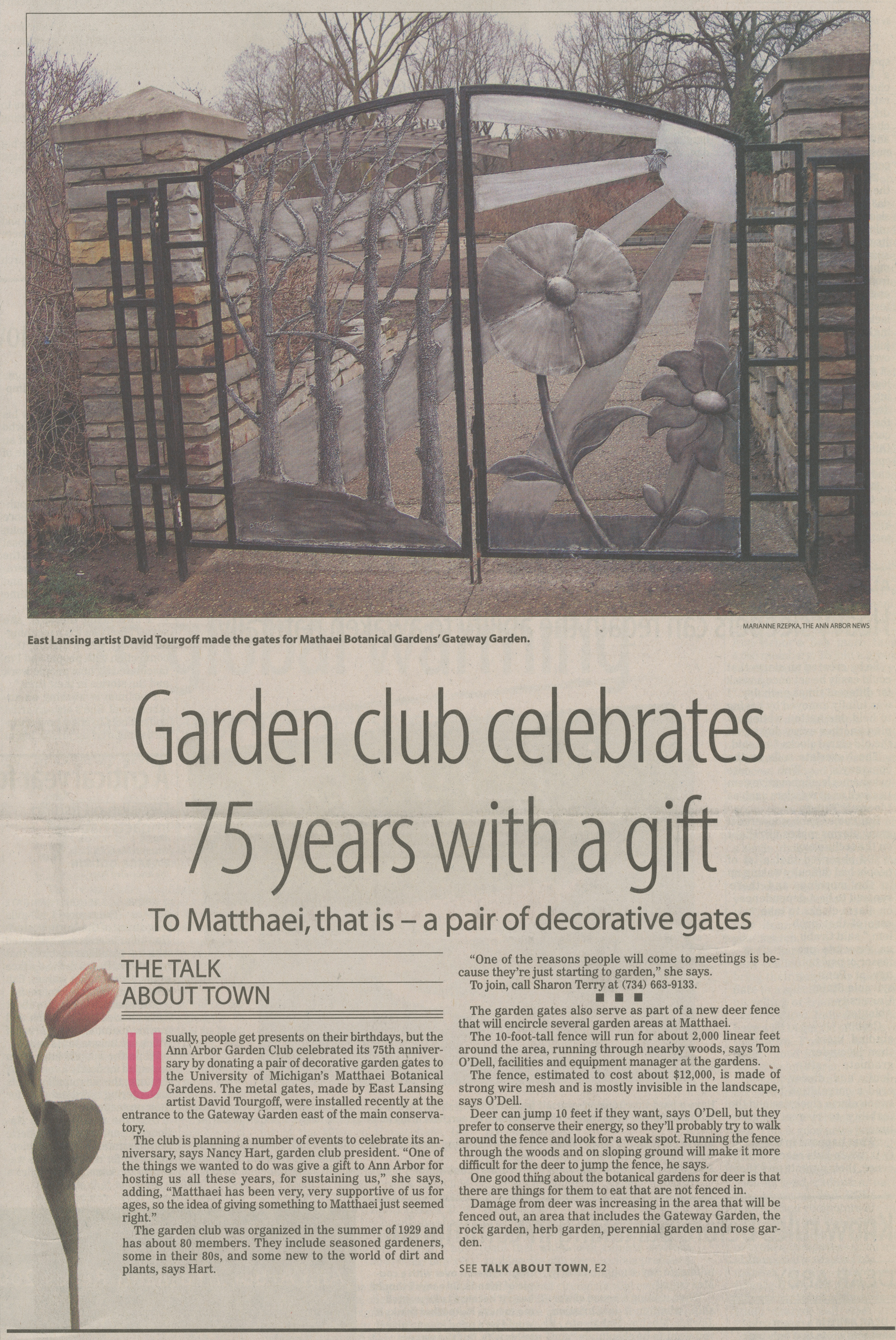 Garden Club Celebrates 75 Years With A Gift - To Matthaei, That Is - A Pair of Decorative Gates image