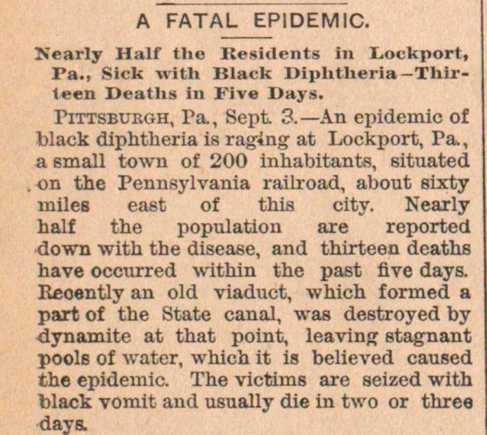 A Fatal Epidemic image