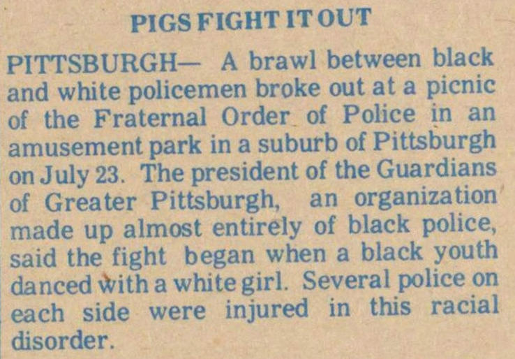 Pigs Fight It Out image