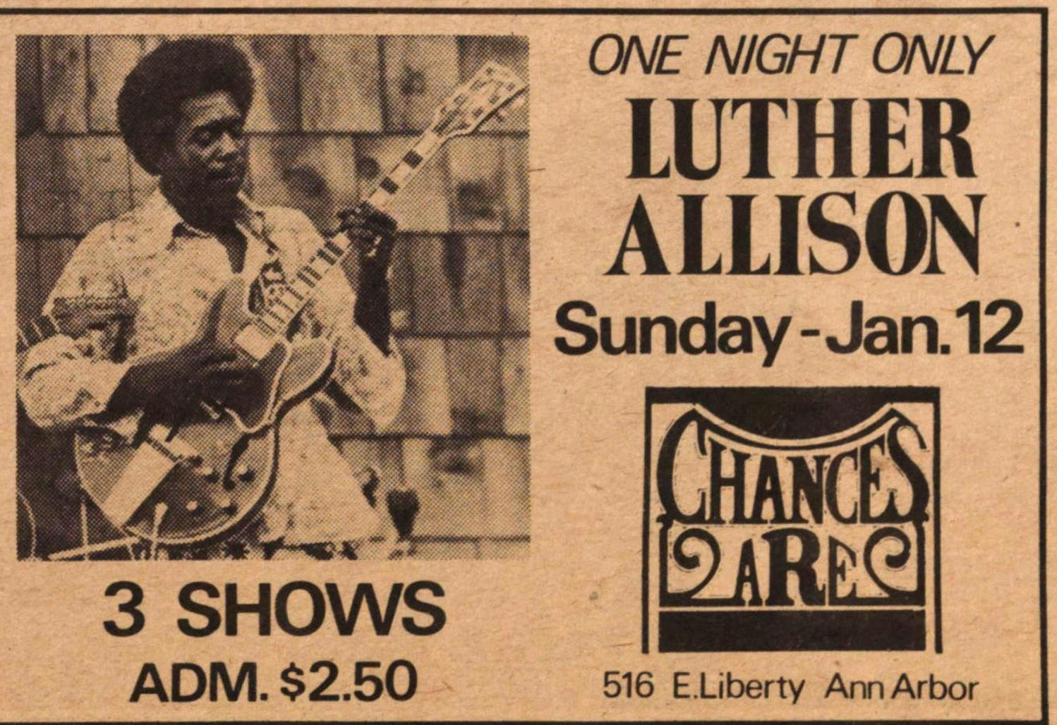Luther Allison image