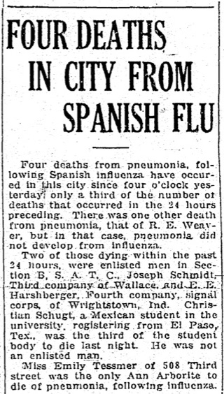 Four Deaths In City From Spanish Flu image