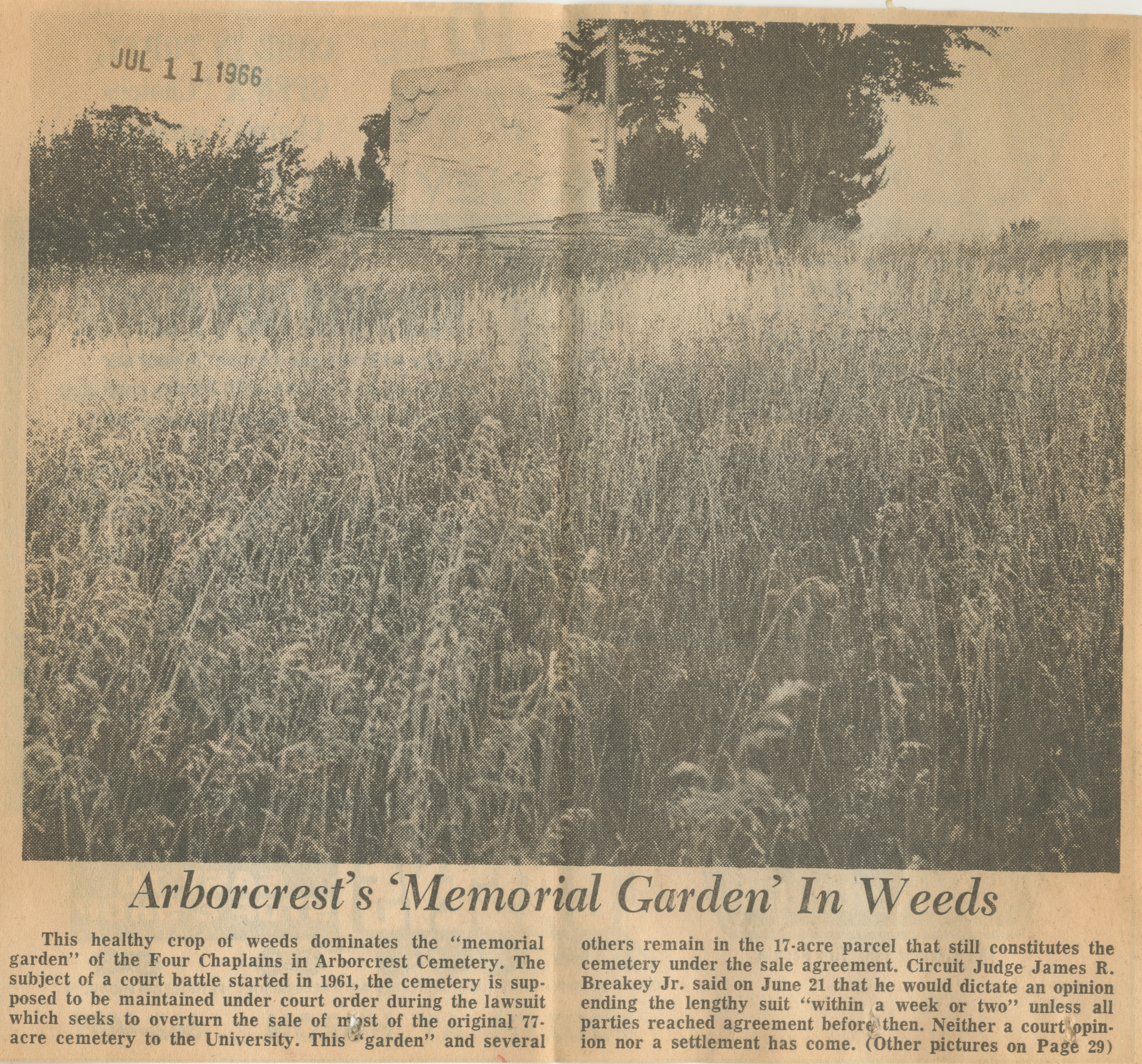 Arborcrest's 'Memorial Garden' In Weeds image