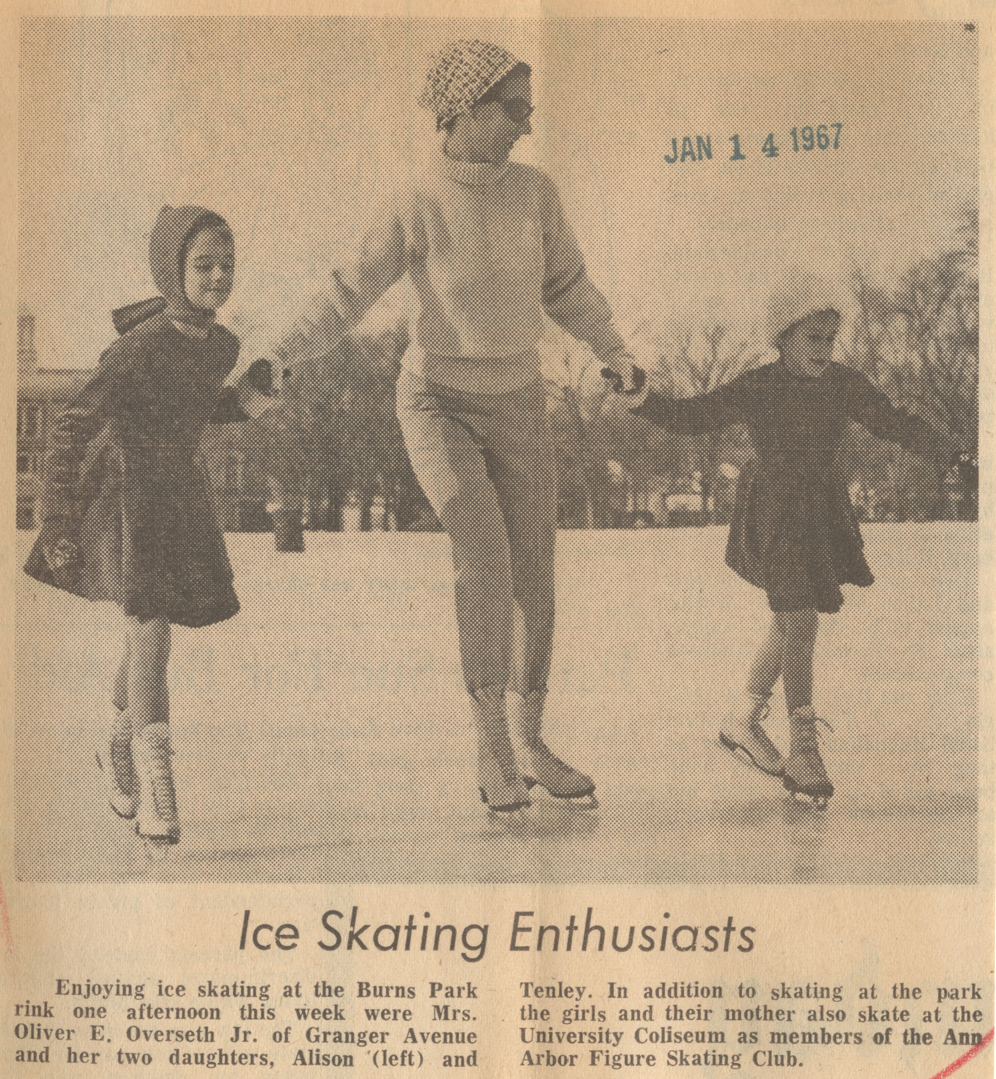 Ice Skating Enthusiasts image