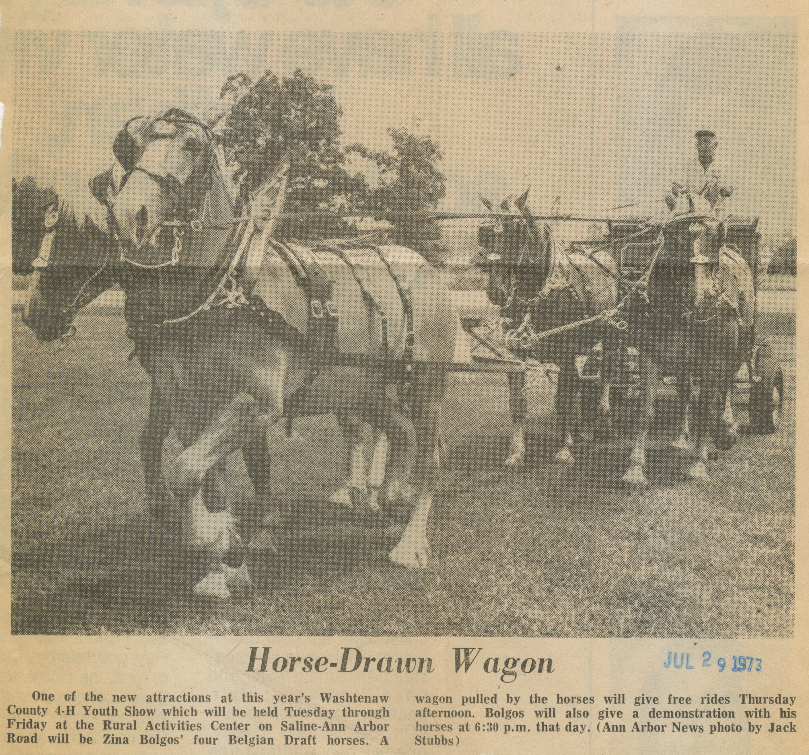 Horse-Drawn Wagon image