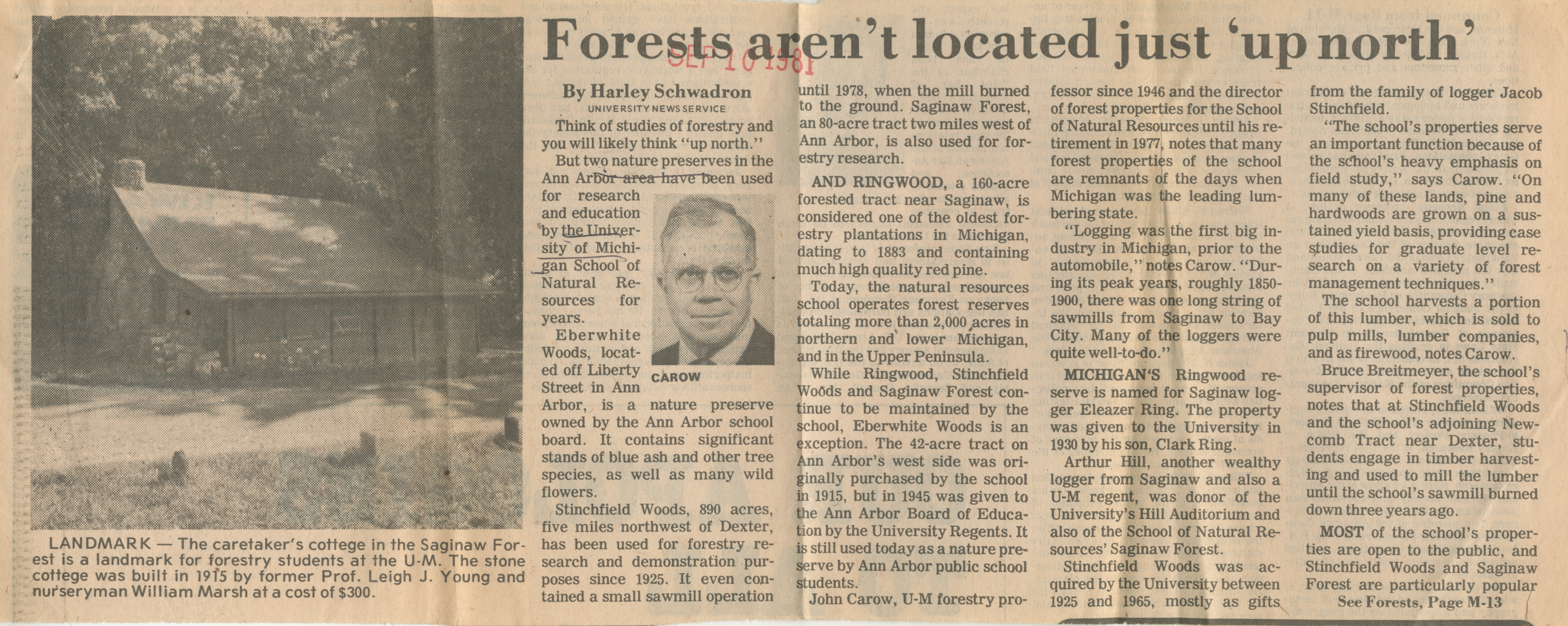 Forests aren't located just 'up north' image