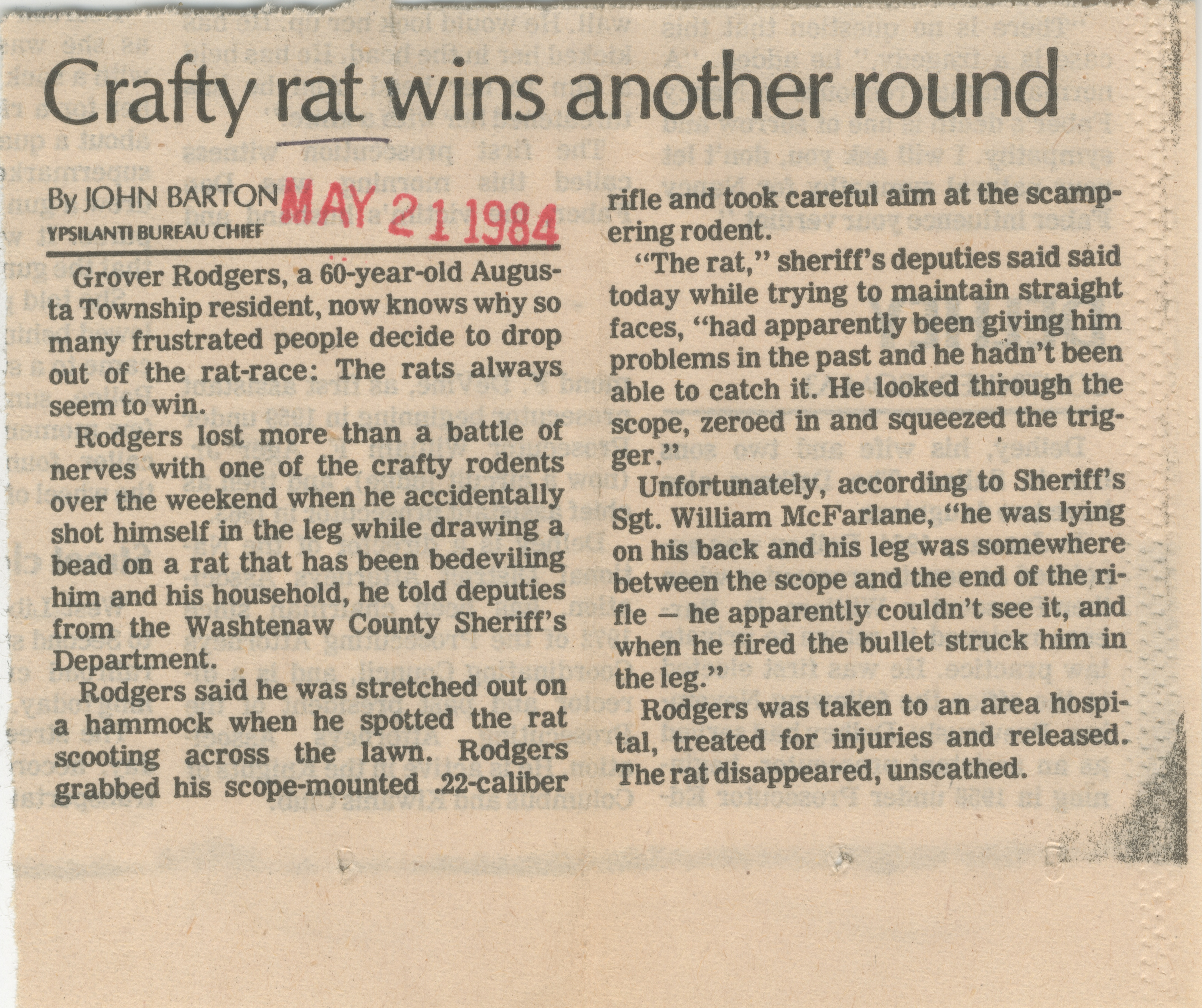 Crafty Rat Wins Another Round  image