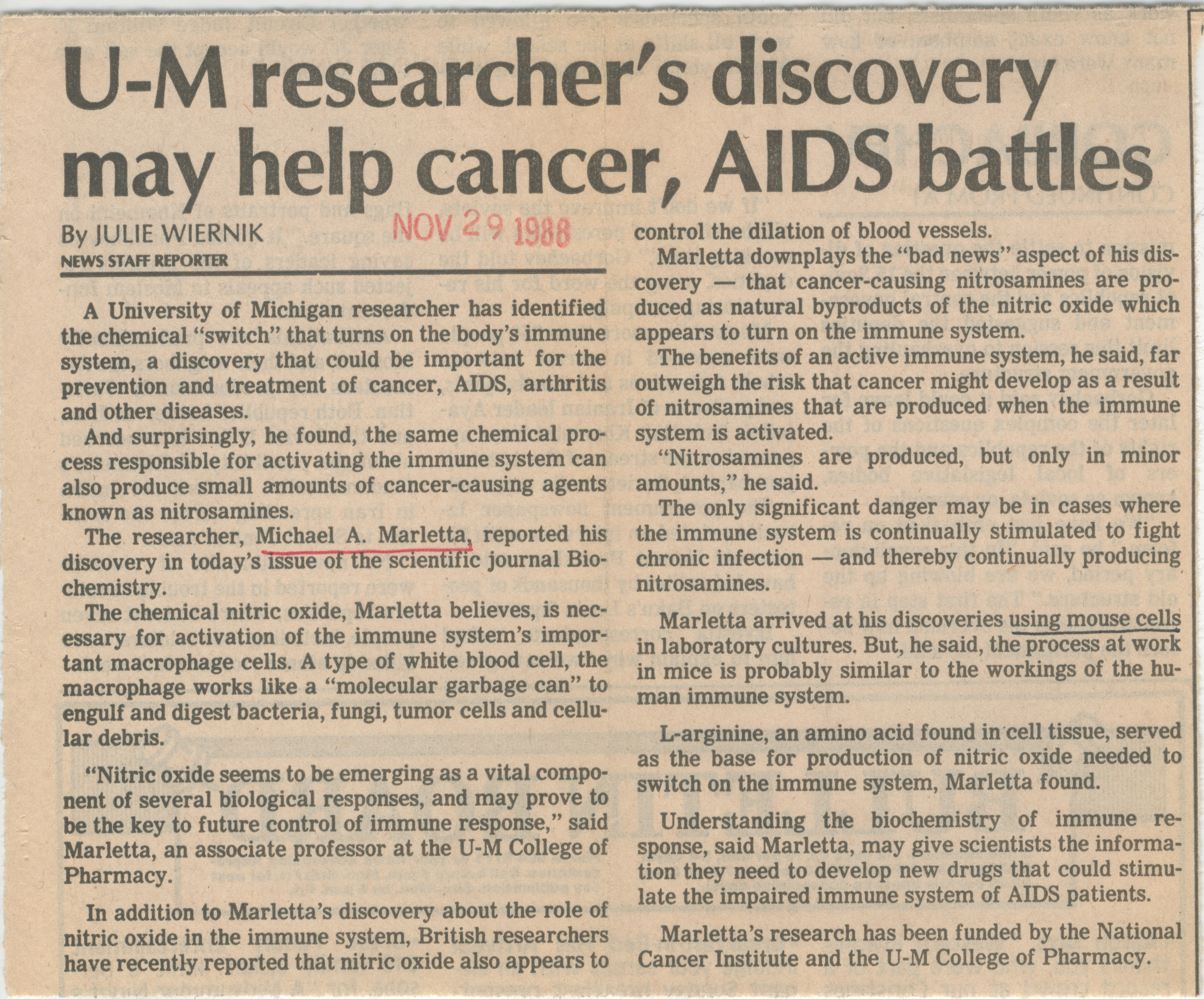 U-M Researcher's Discovery May Help, Cancer, AIDS battles  image
