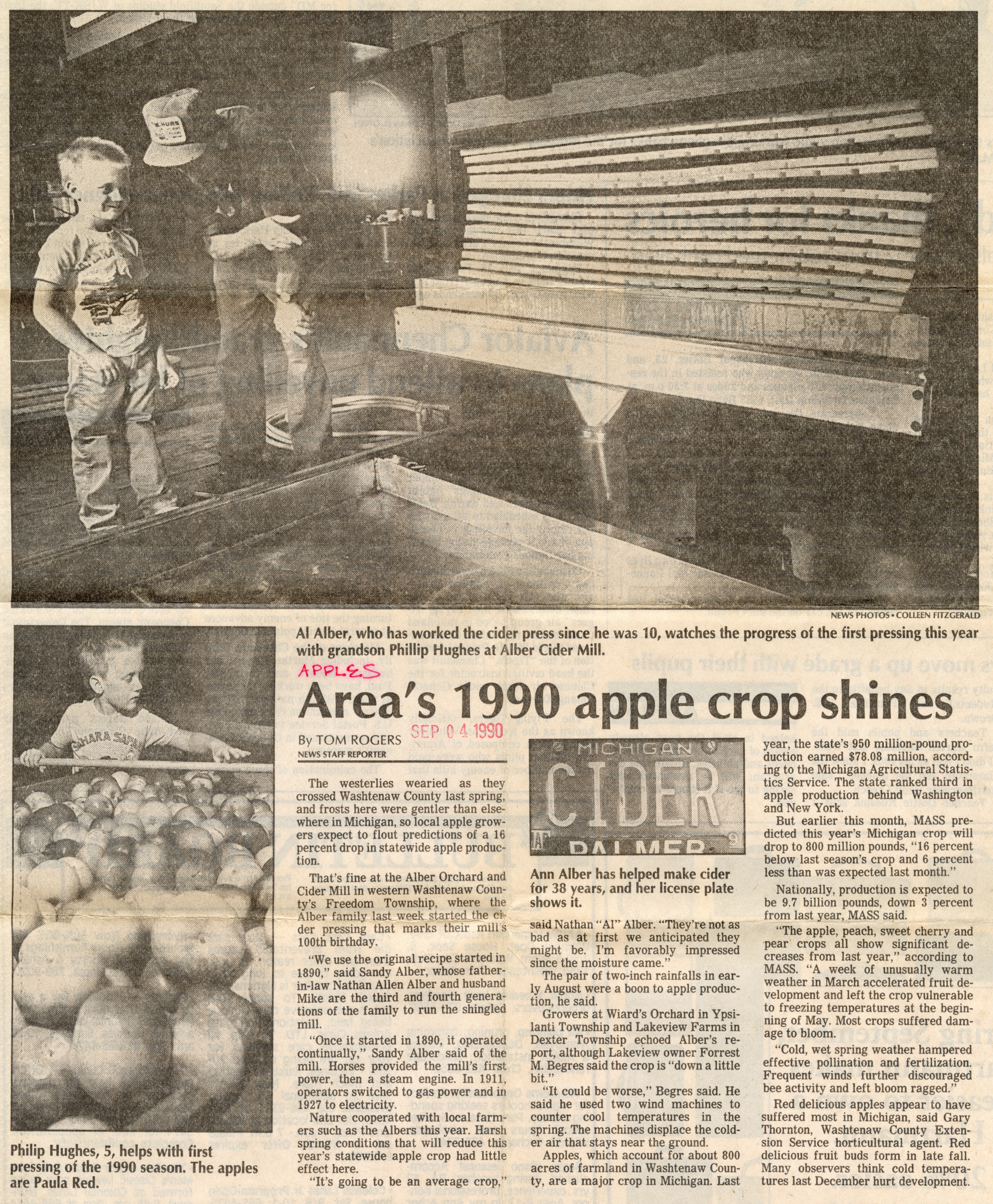 Area's 1990 Apple Crop Shines image
