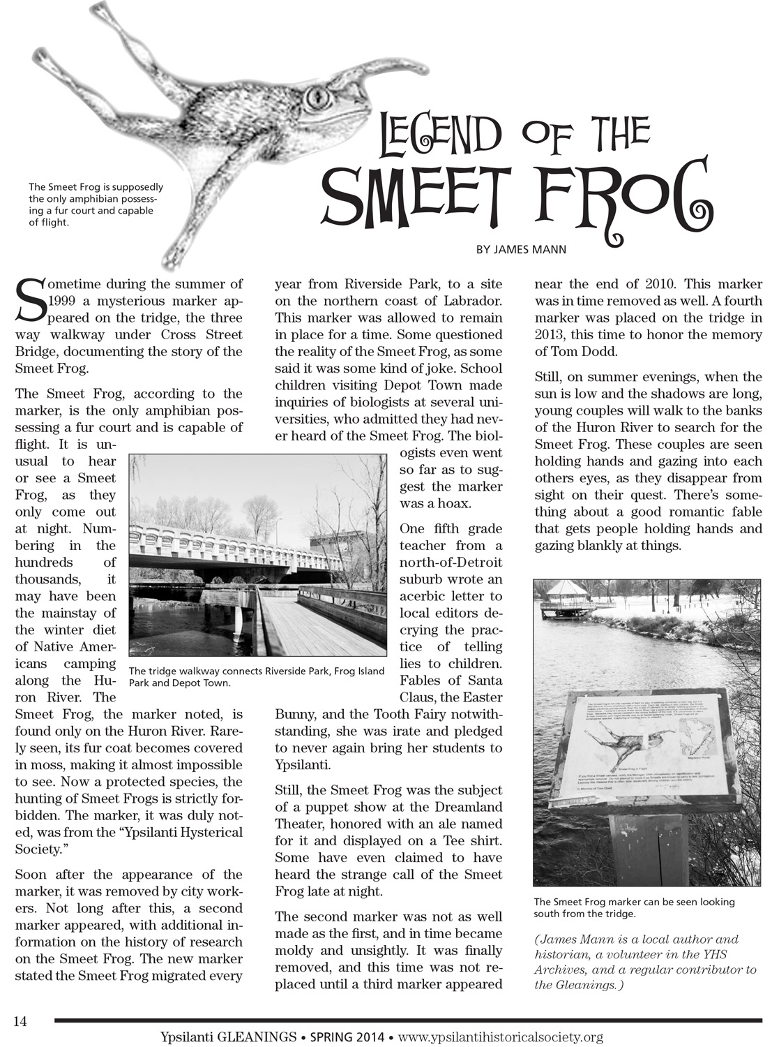 Legend of the Smeet Frog image