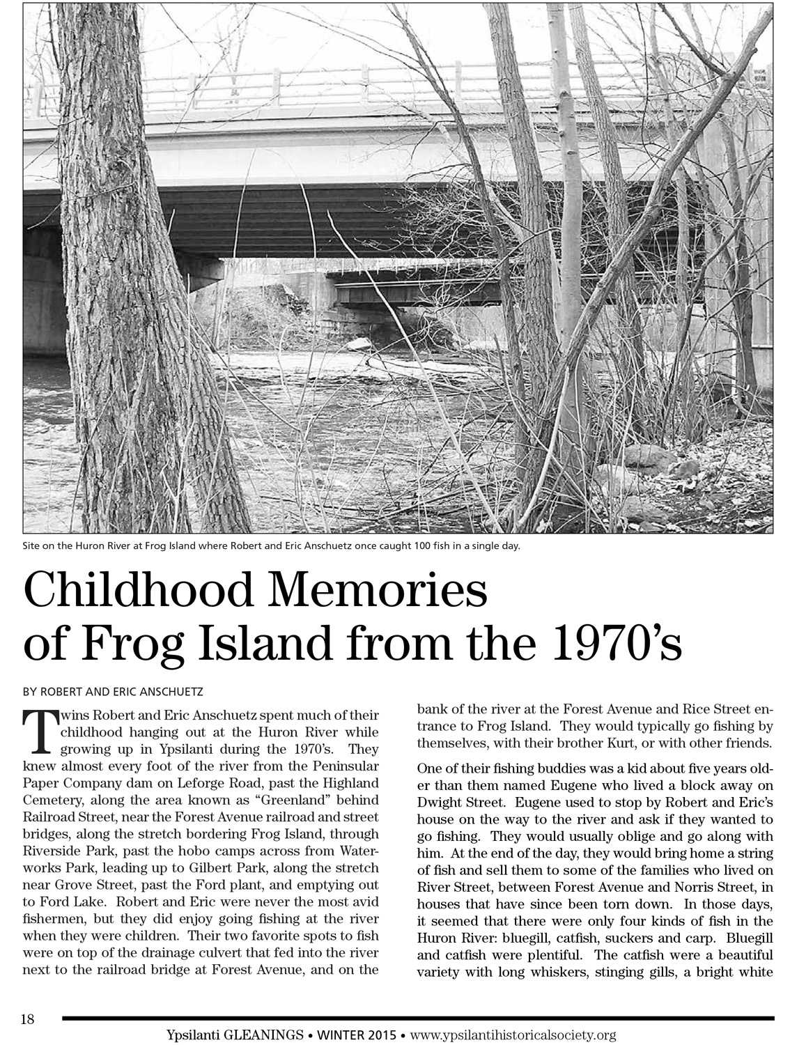 Childhood Memories of Frog Island from the 1970's image