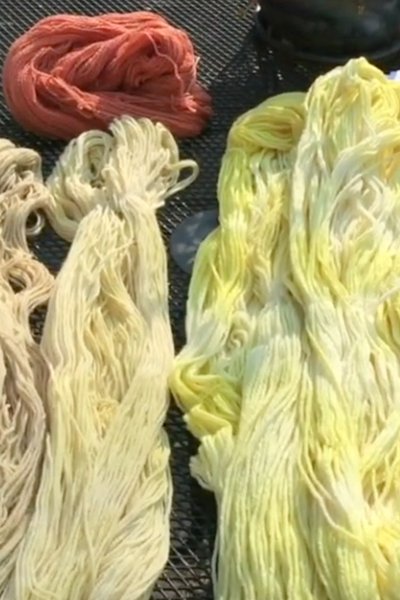 Cover image for Natural Dyes