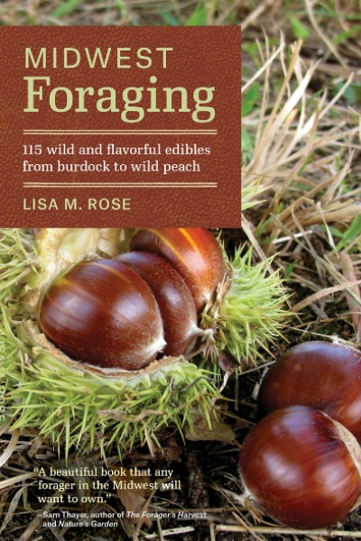 Cover image for Midwest Foraging