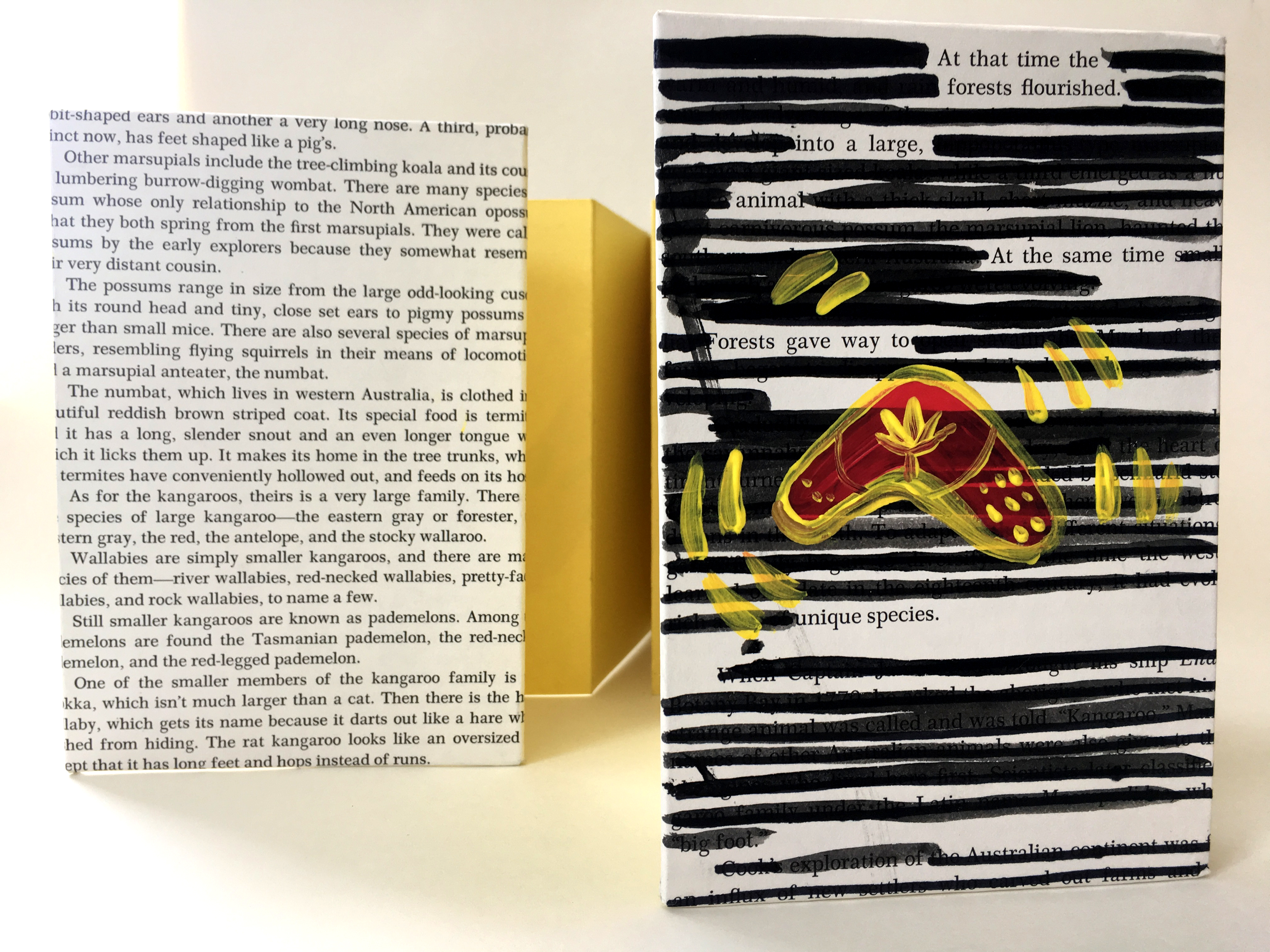 Picture of an accordion book with blackout poetry as the cover.
