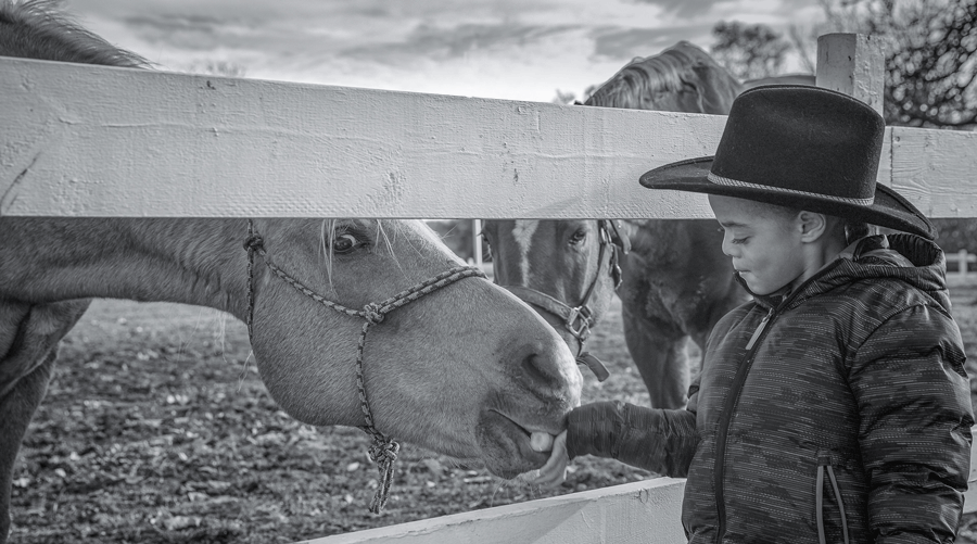 A young boy wearing a puffy coat and cowboy hat feeds a horse a carrot.
