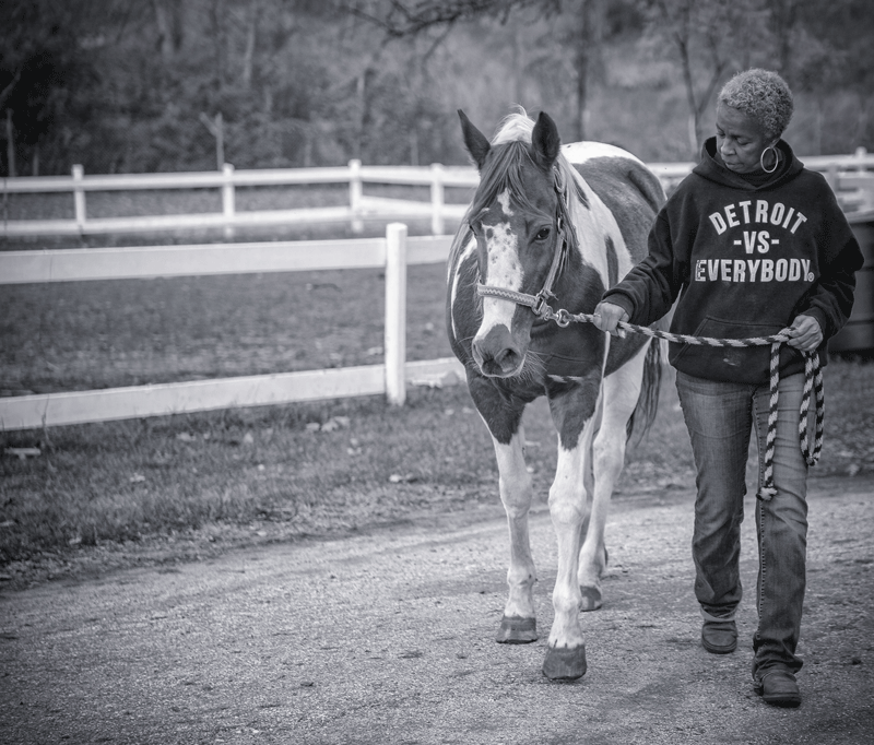 A woman wearing a Detroit versus Everybody sweatshirt leads a brown and white horse along a path.
