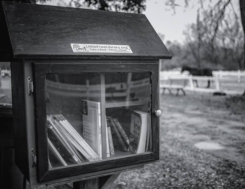 A close-up view of a Free Little Library.