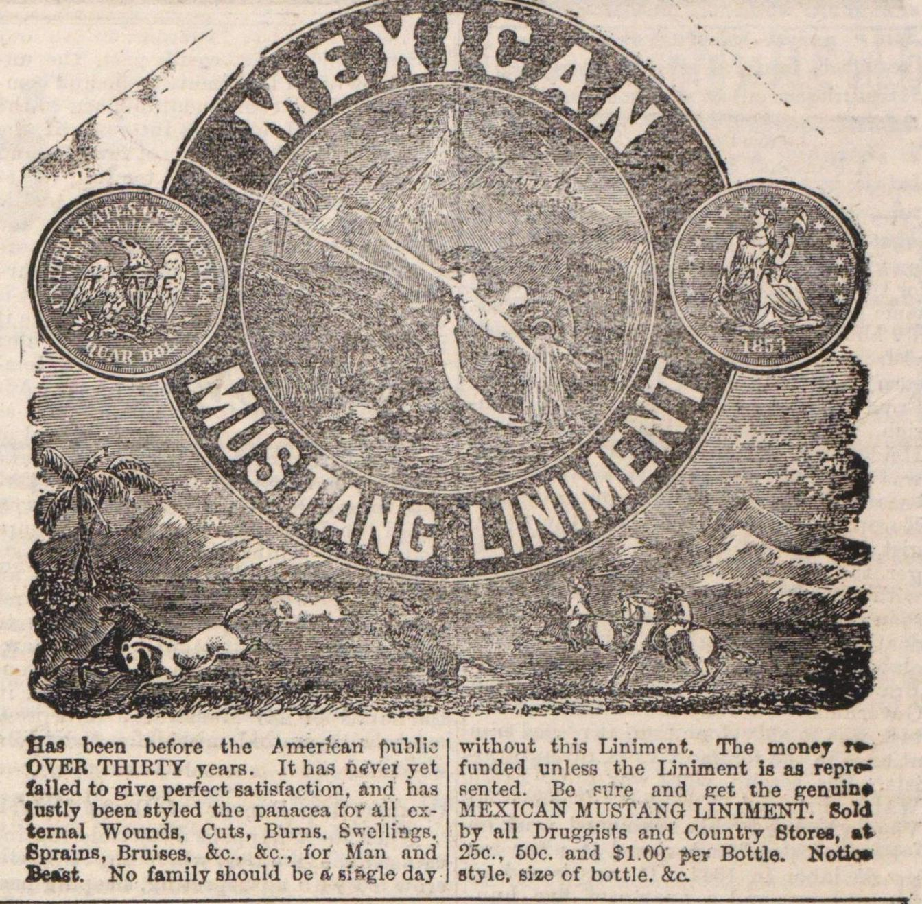 Mexican Mustang Liniment image
