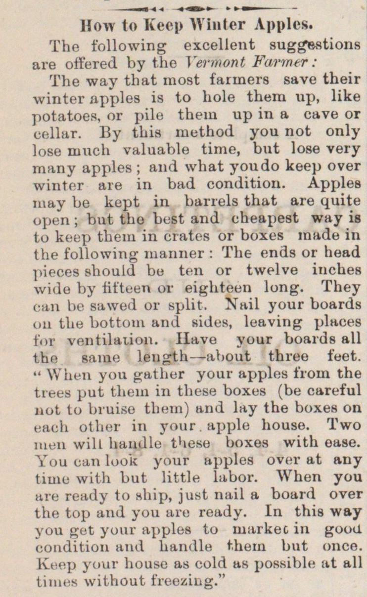 How To Keep Winter Apples image