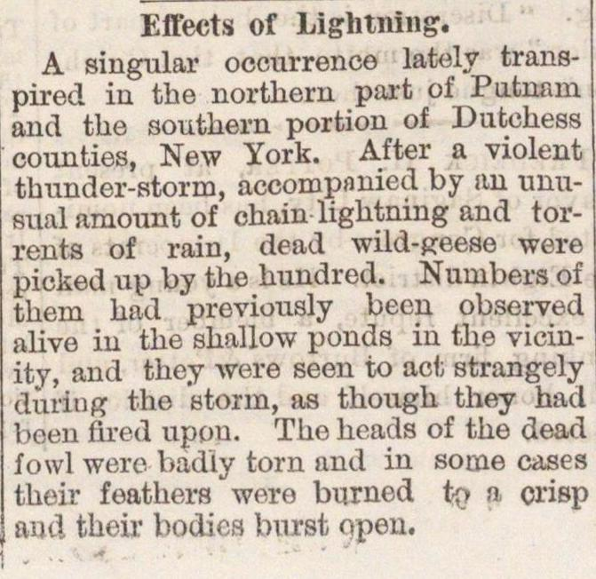 Effects Of Lightning image