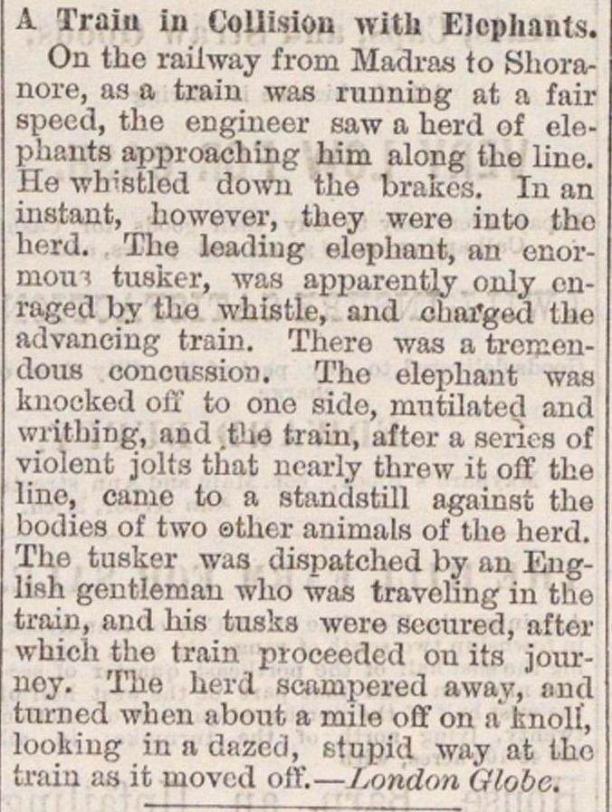 A Train In Collision With Elephants image