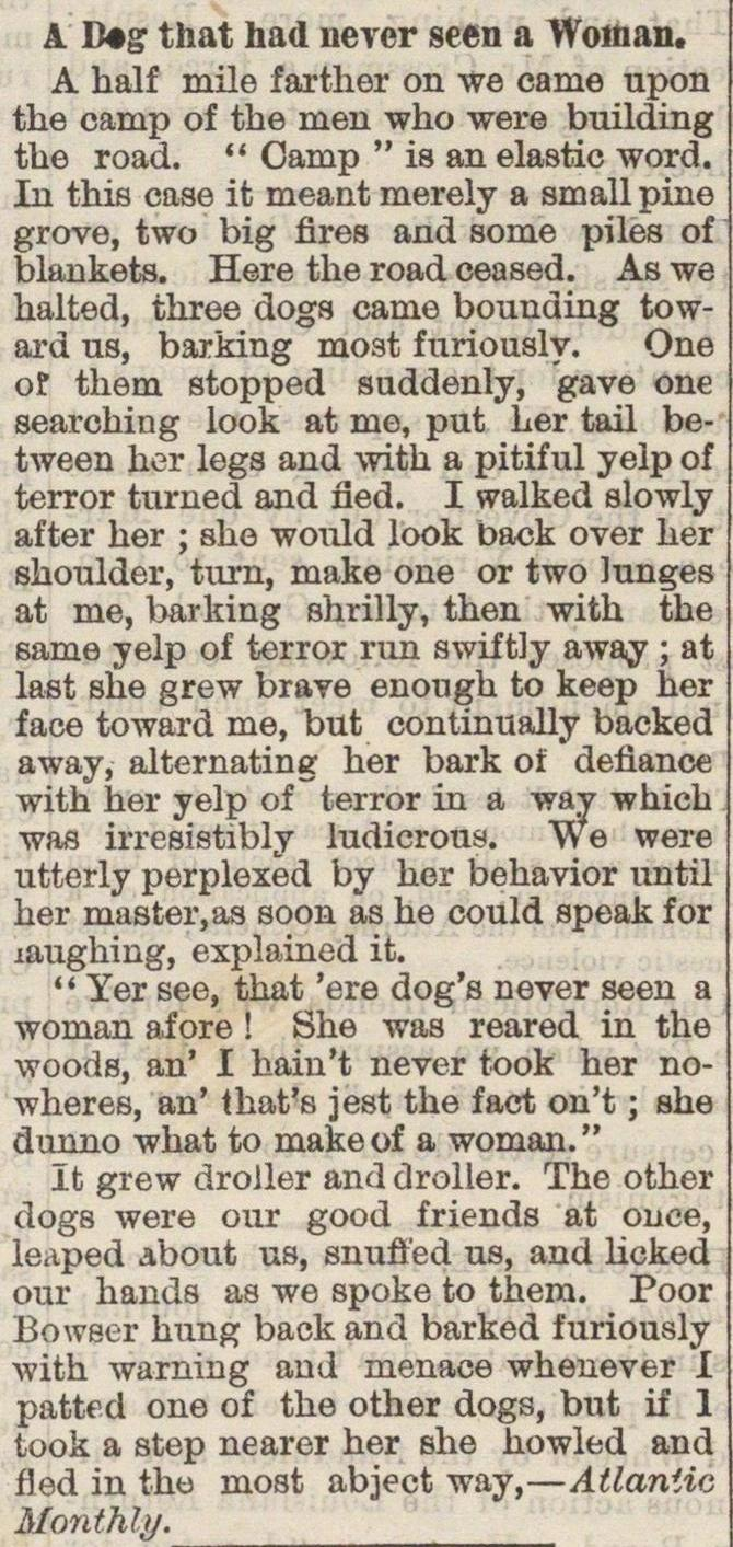 A Dog That Had Never Seen A Woman image