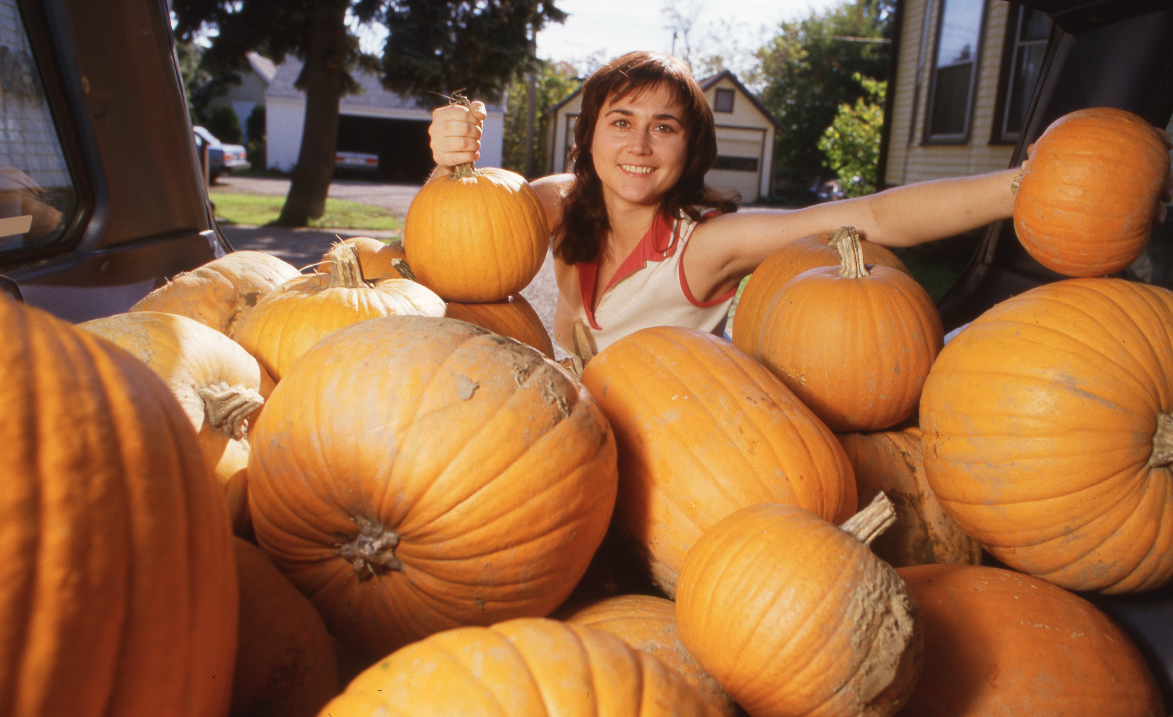 Cyndi Solski With Halloween Pumpkins For Her Carving Party, October 1986 image