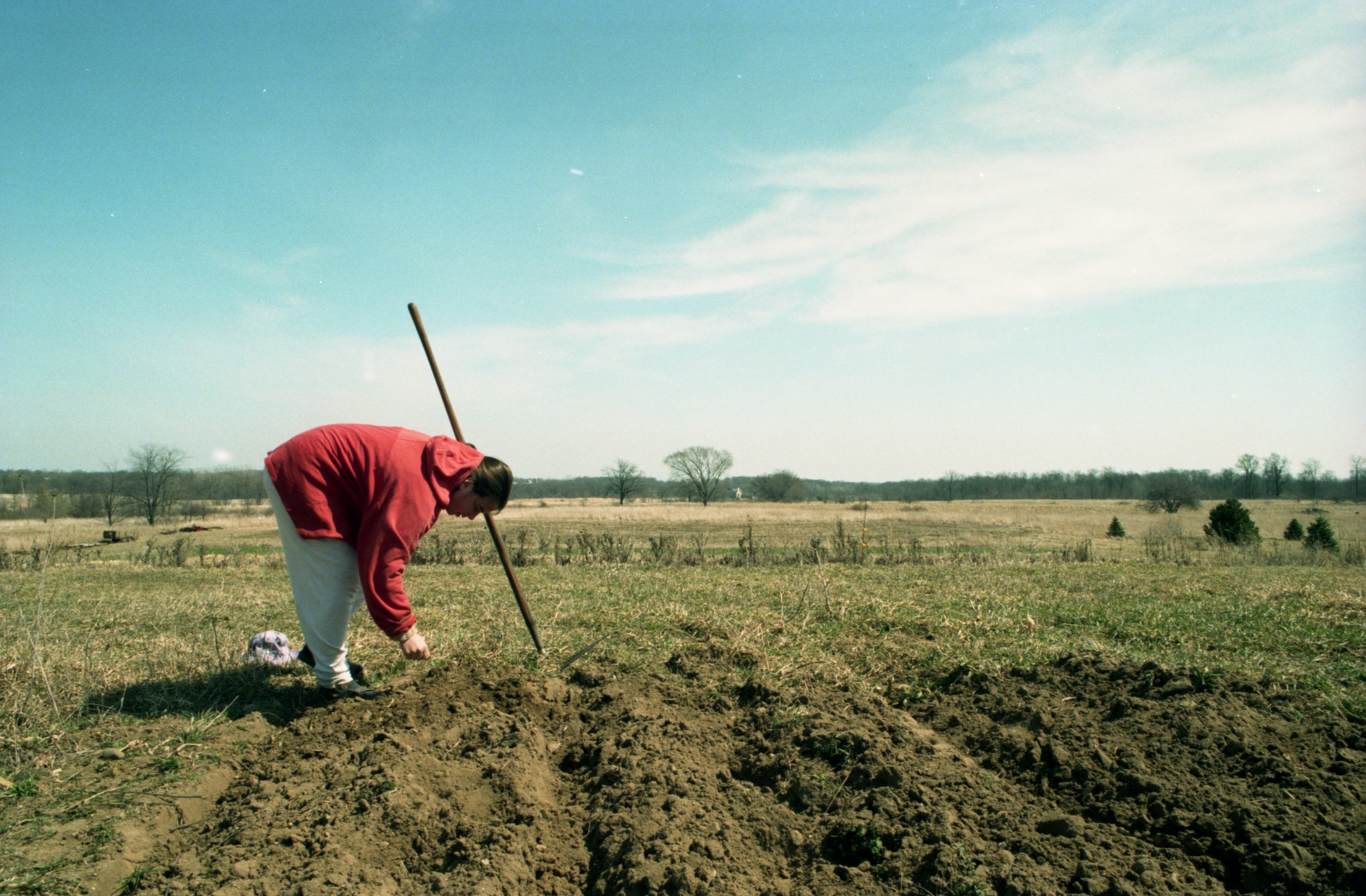 Heather McIntosh Works In The Fields At Community Farm, April 1994 image