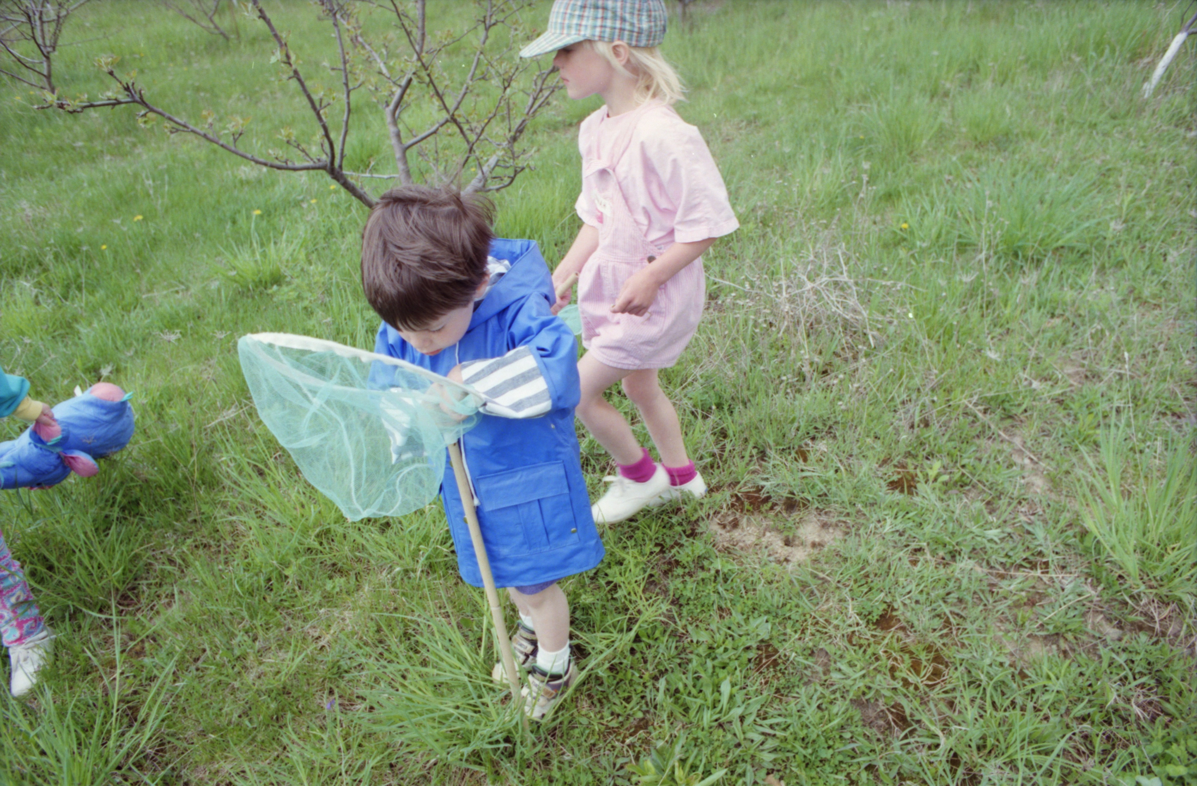 Colton Morozow and Hannah Howells looking for insects, Leslie Science Center, May, 1994 image