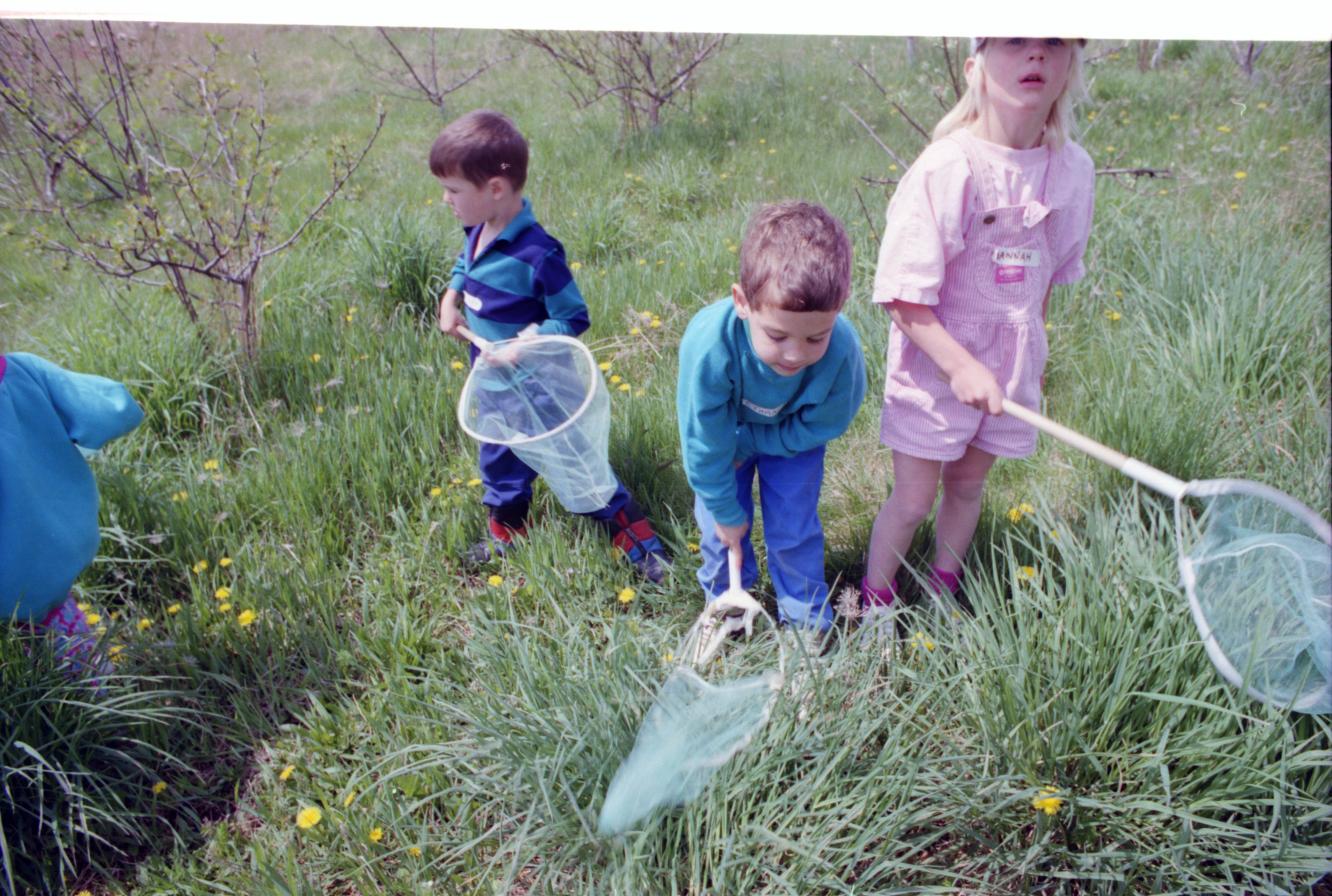 Children Hunt For Insects At The Leslie Science Center, May 1994 image