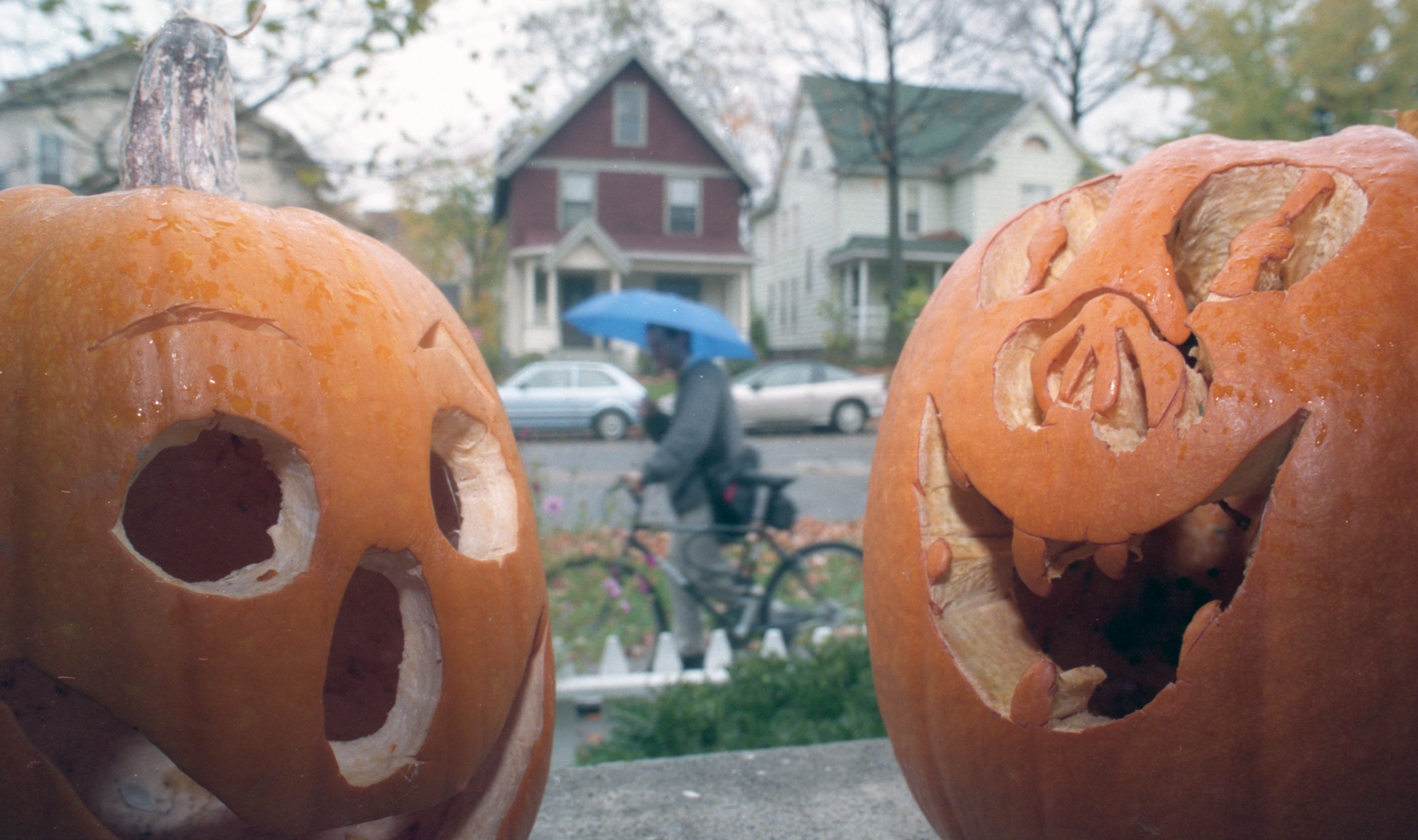Pumpkins Decorate The Front Porch Of The Michigan House Co-Op, October 1994 image