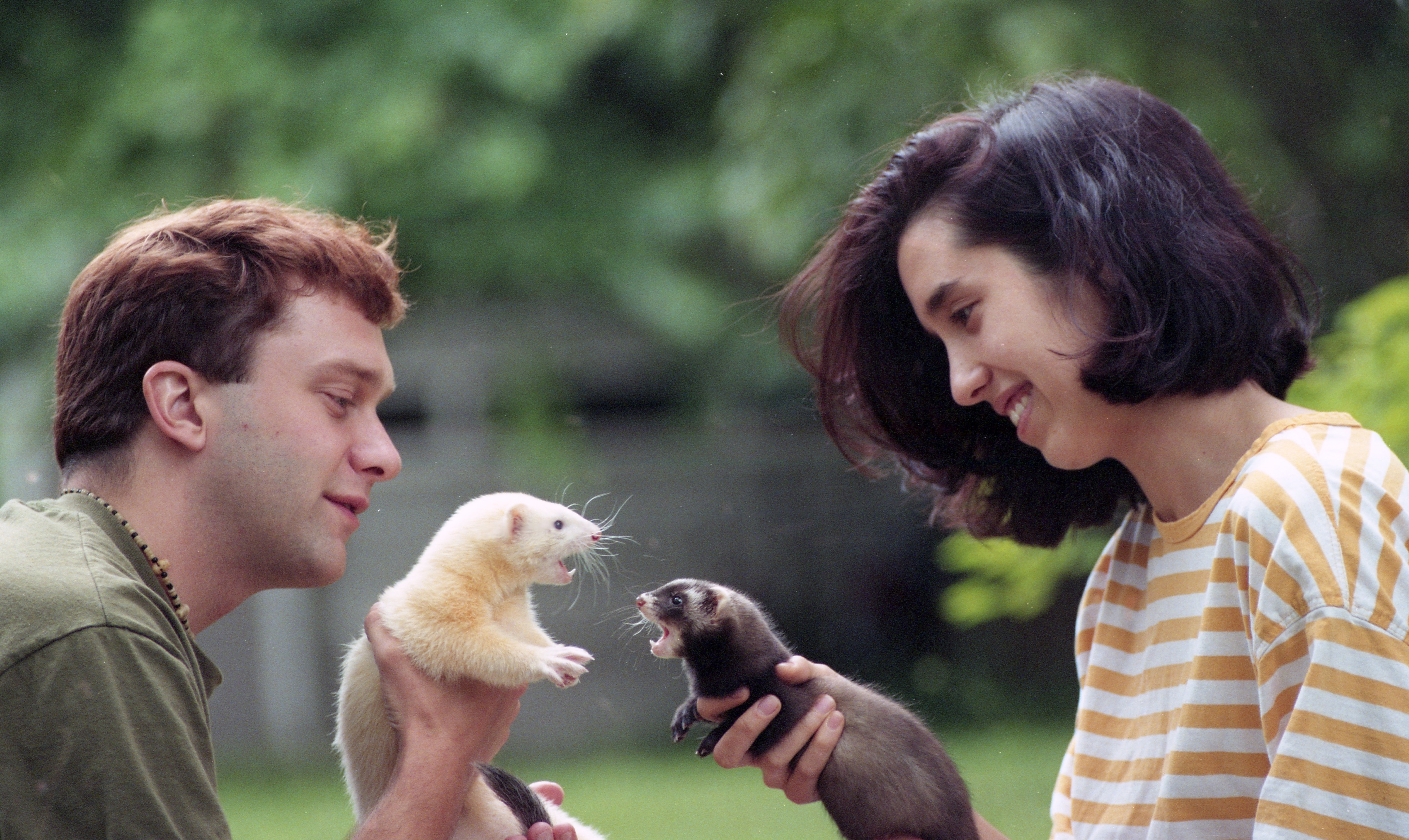 Christopher Ingersoll, Melissa Litwicki, & Their Pet Ferrets, July 1995 image