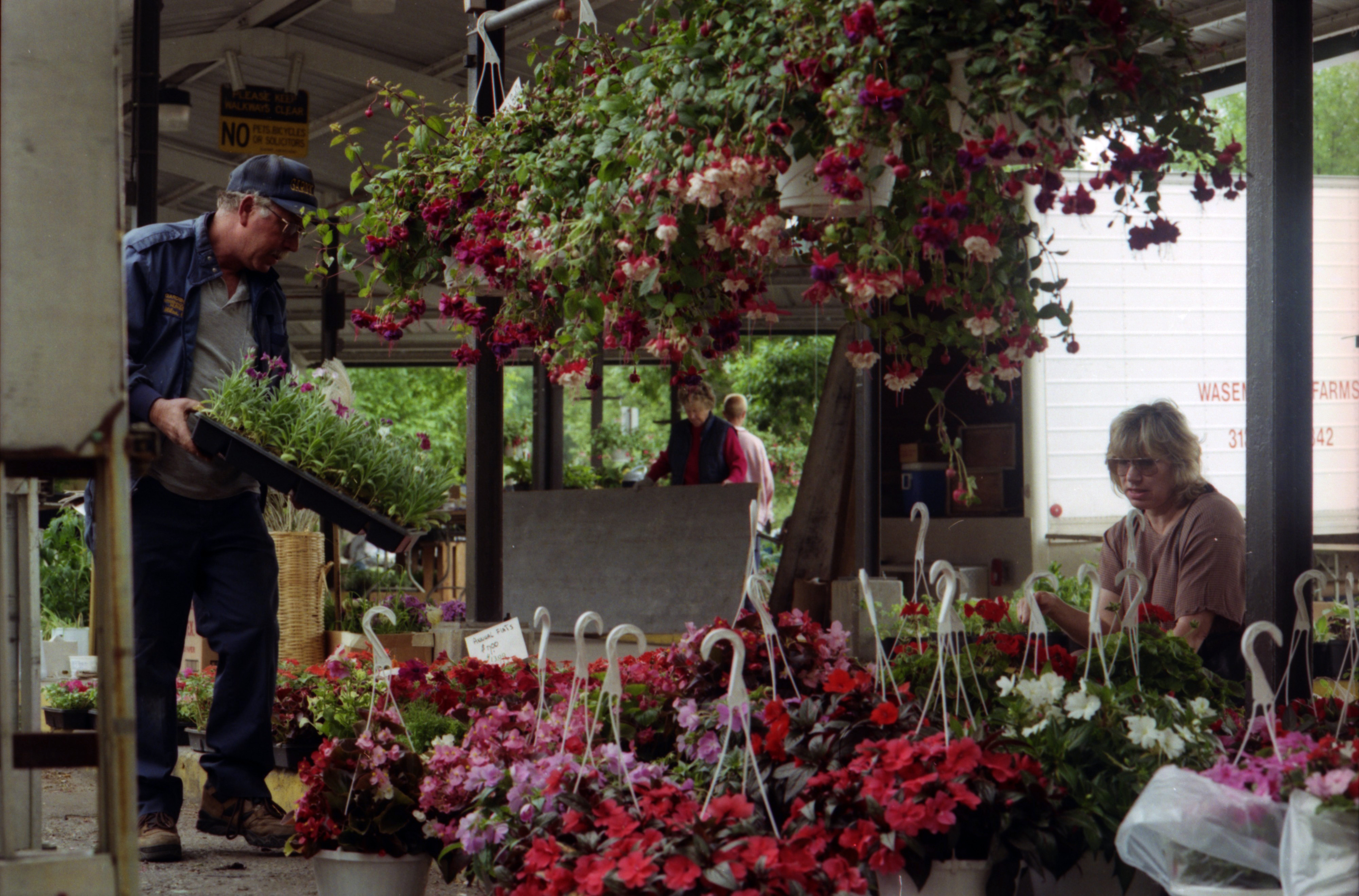 Flowers At The Ann Arbor Farmers Market, June 1996 image