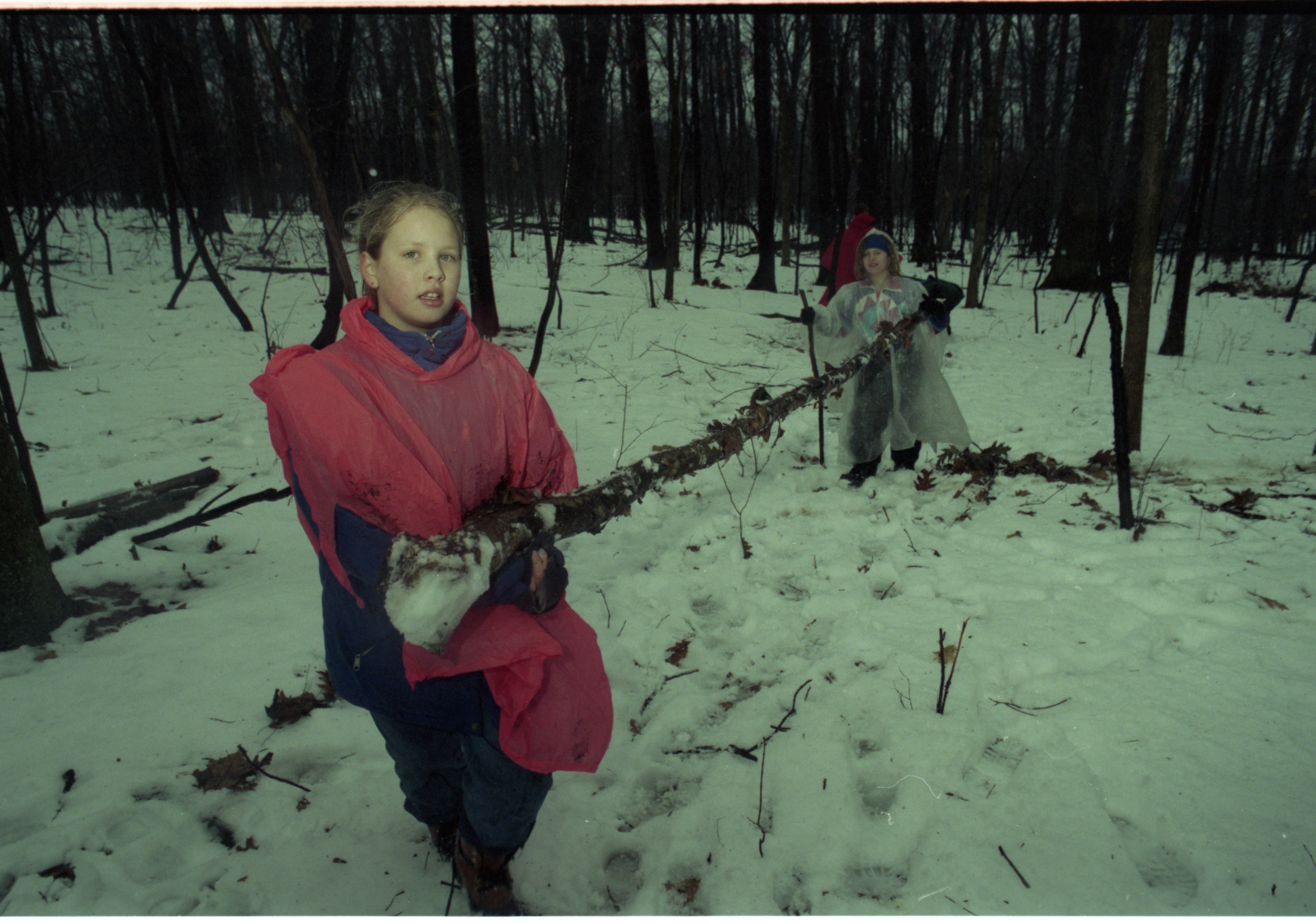 Eberwhite School Students Haul Firewood In Winter Survival Skills Outing, January 1997 image