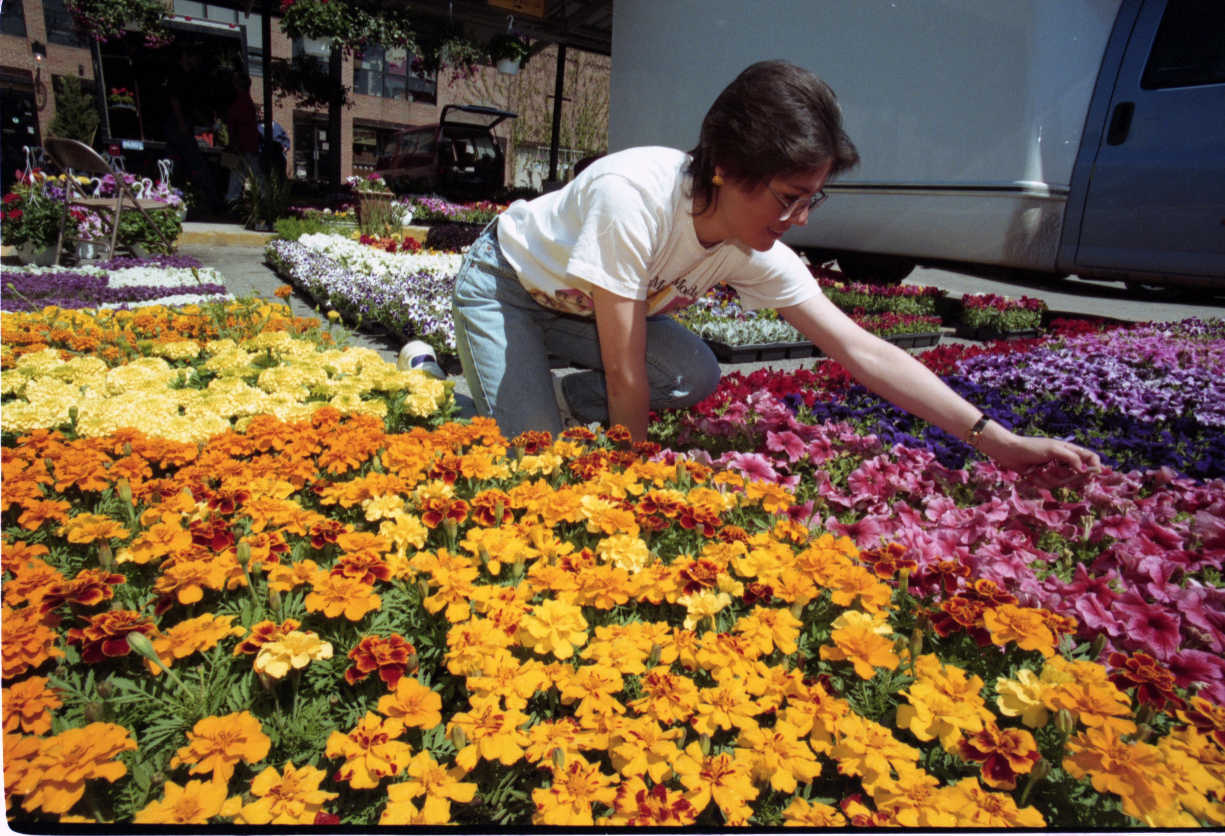 Flowers For Sale At The Farmer's Market, May 1997 image