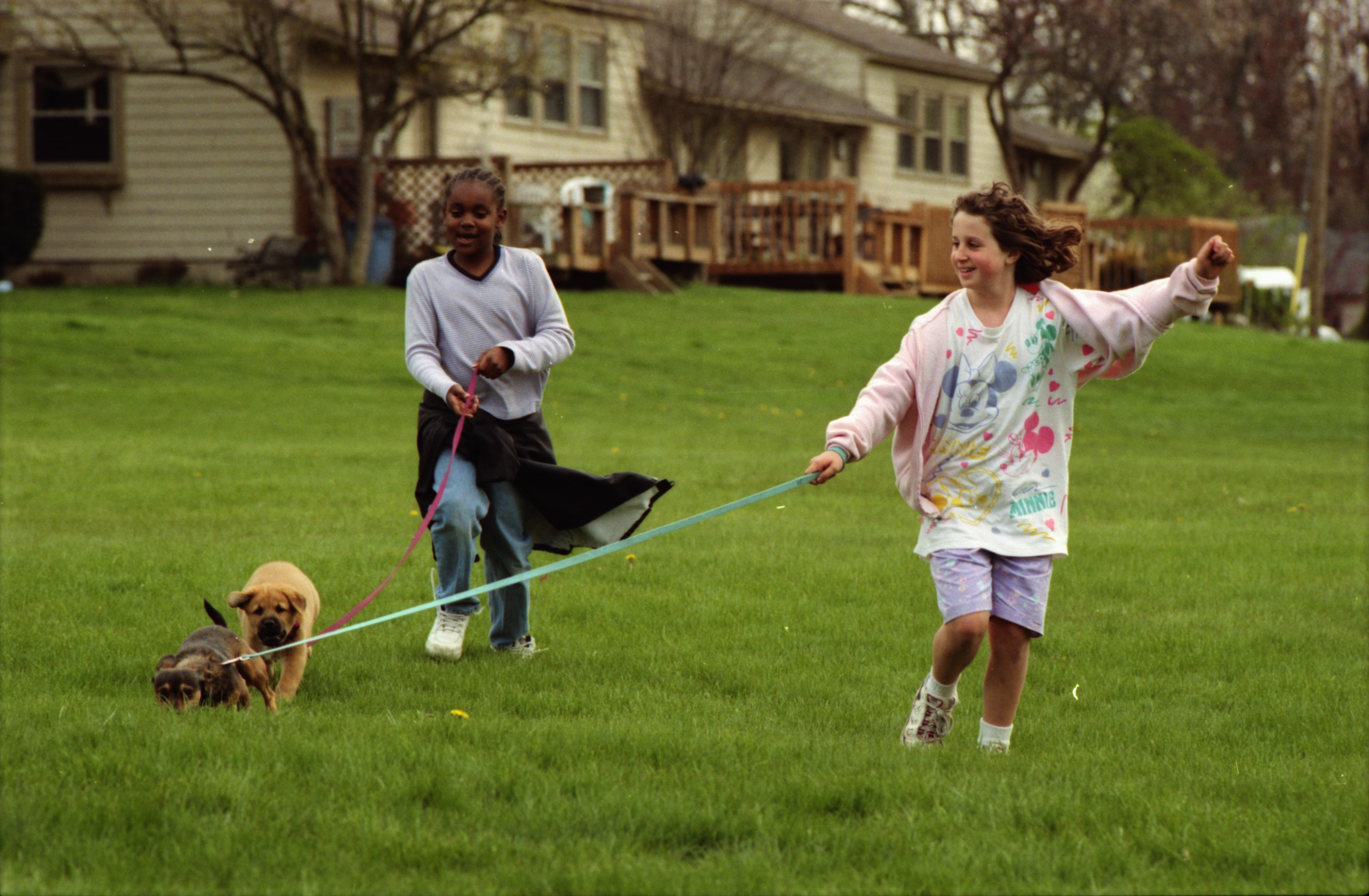 Young Residents of The Village Walk Their Dogs, April 1999 image