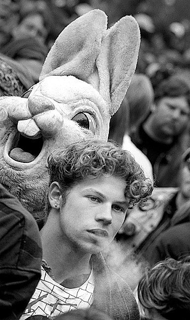Person In Bunny Suit & Other Hash Bash Participants, April 2, 1995 image