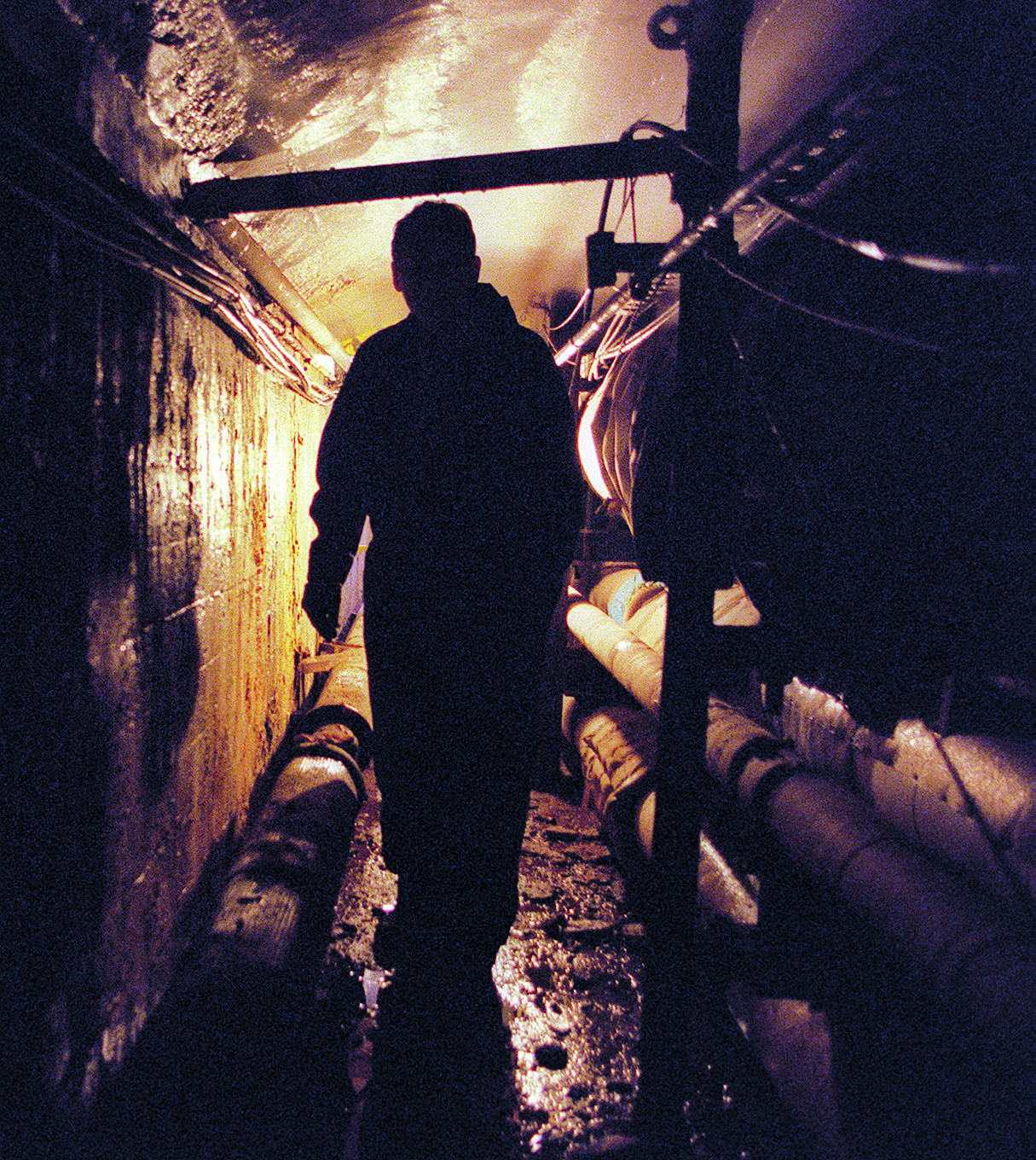 Rick Minton In The U-M Tunnels Under State St Near Michigan Union, February 14, 2000 image