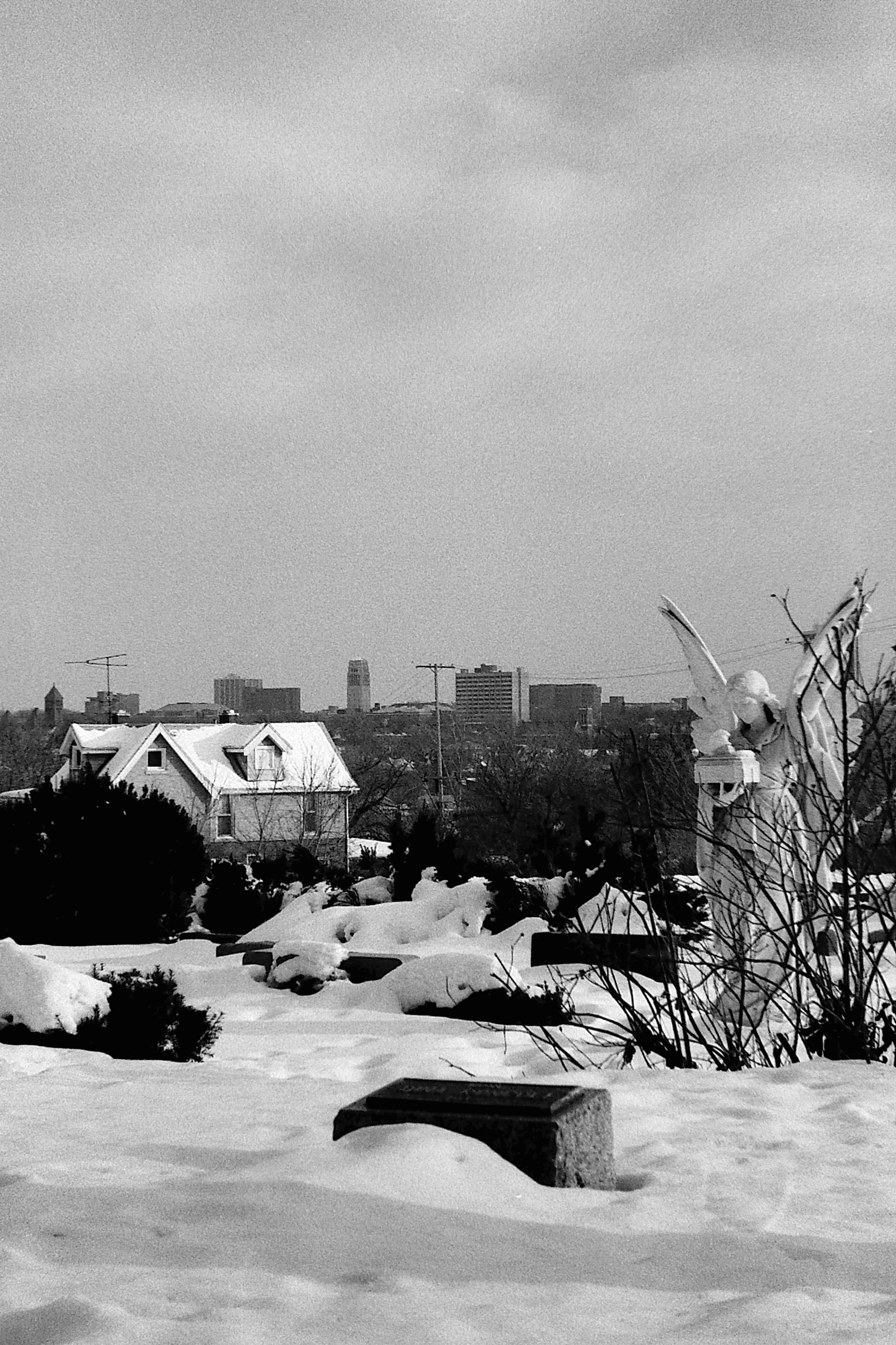 Ann Arbor Skyline As Seen From St Thomas Catholic Cemetery, 1978 image