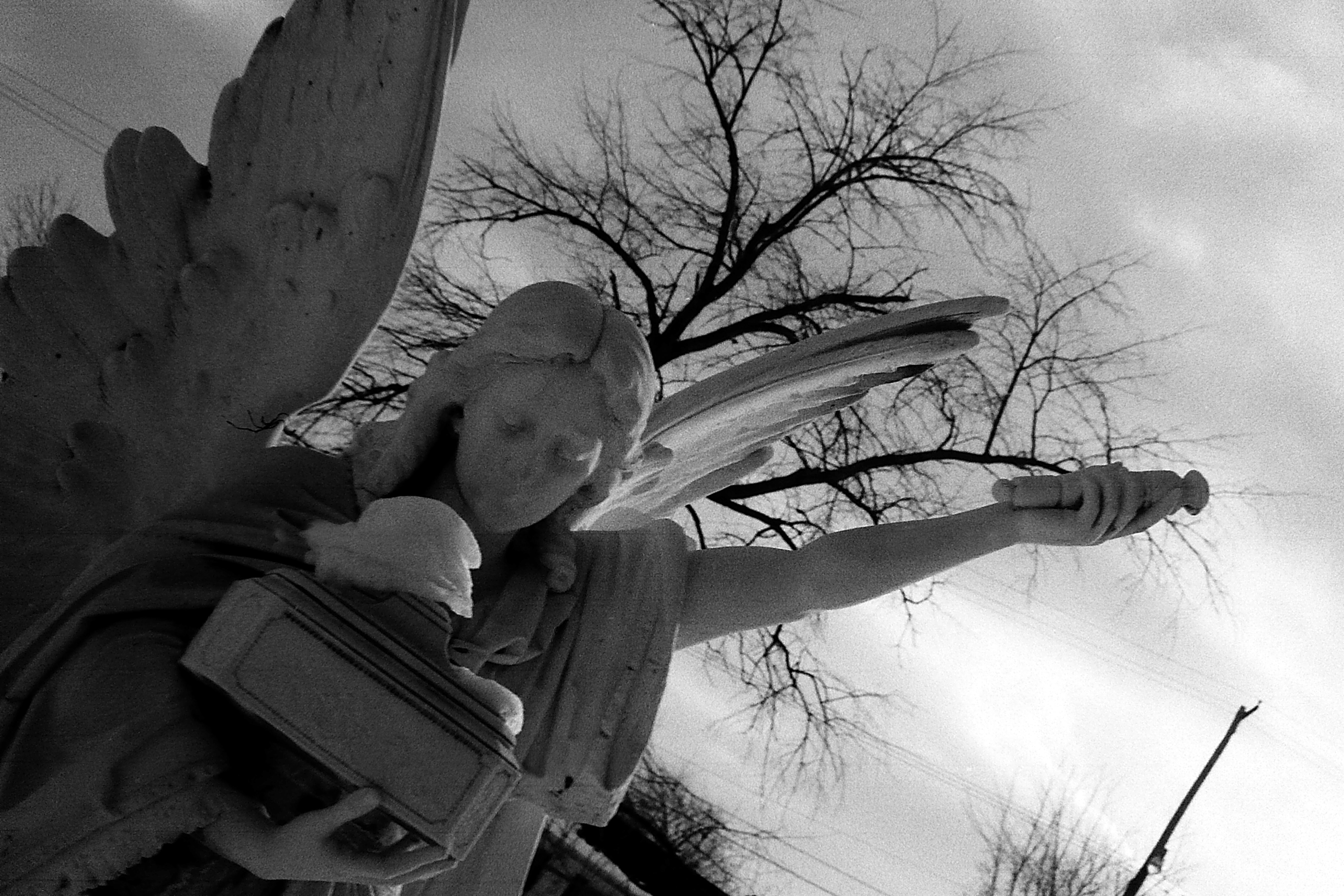 Angel in St Thomas Catholic Cemetery, 1978 image