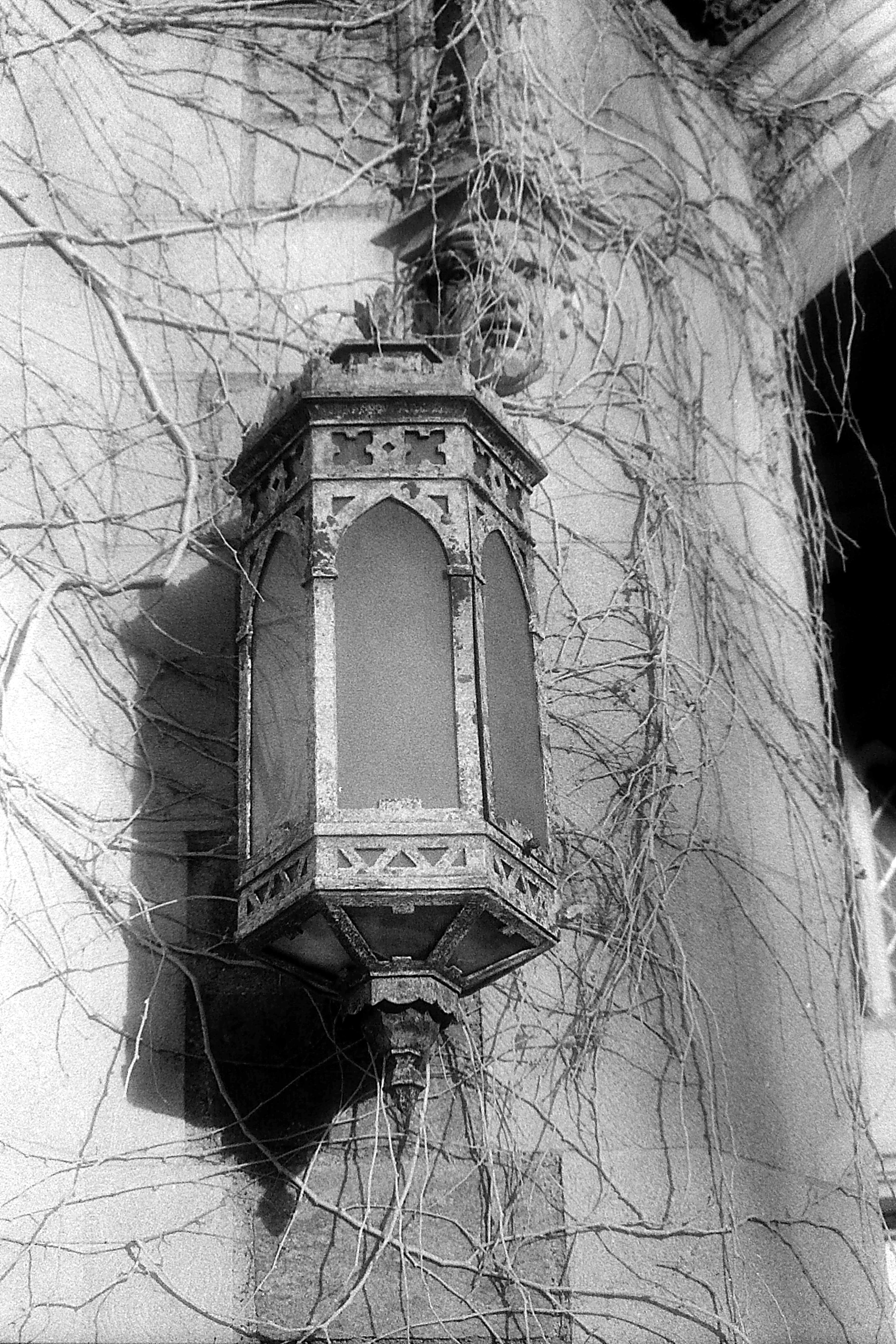 Law Library Sconce, 1978 image