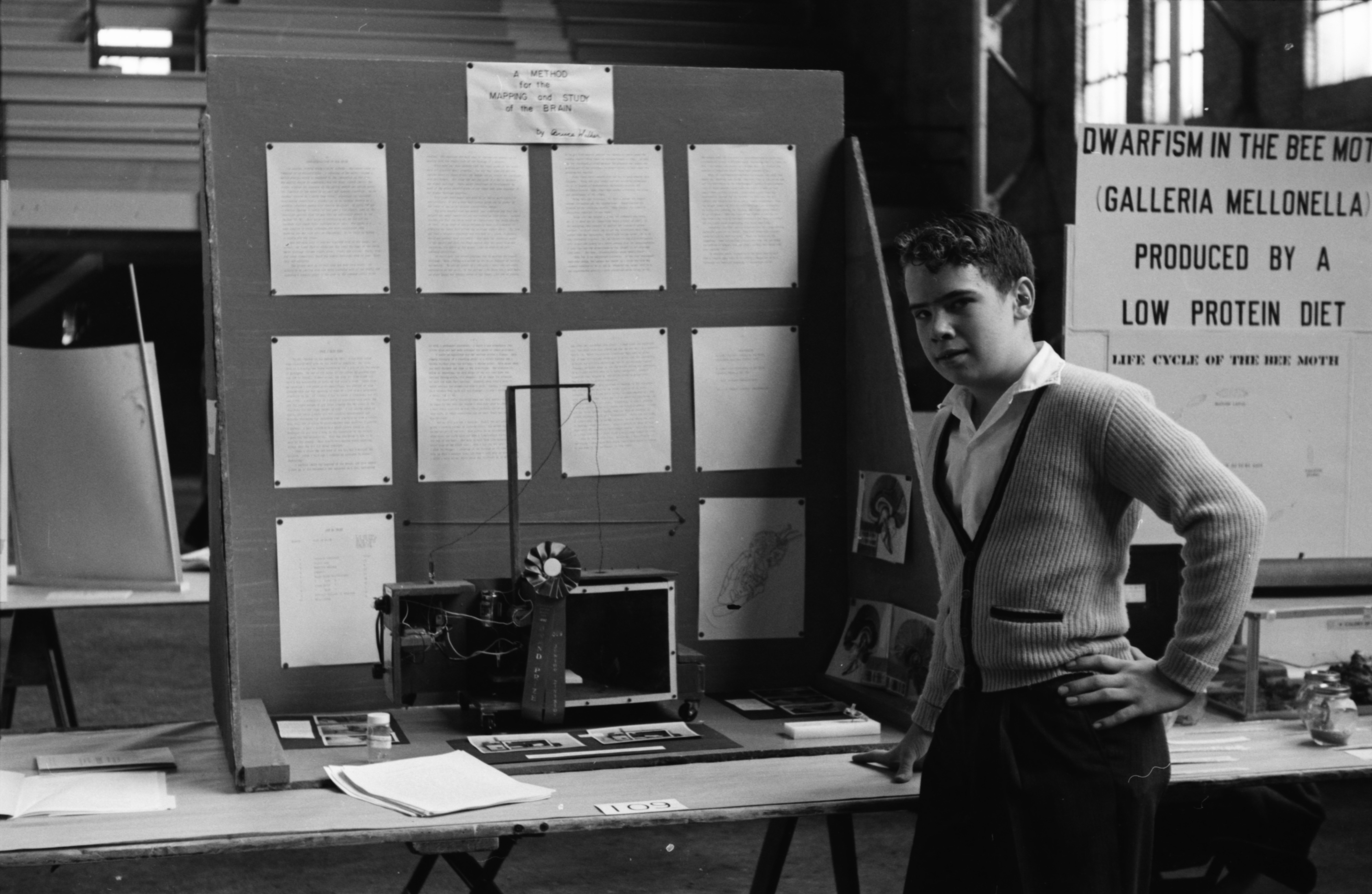 Bruce Walker, of Tappan Junior High School, wins first place in the junior division at the Southeast Michigan Science Fair, April 1960 image