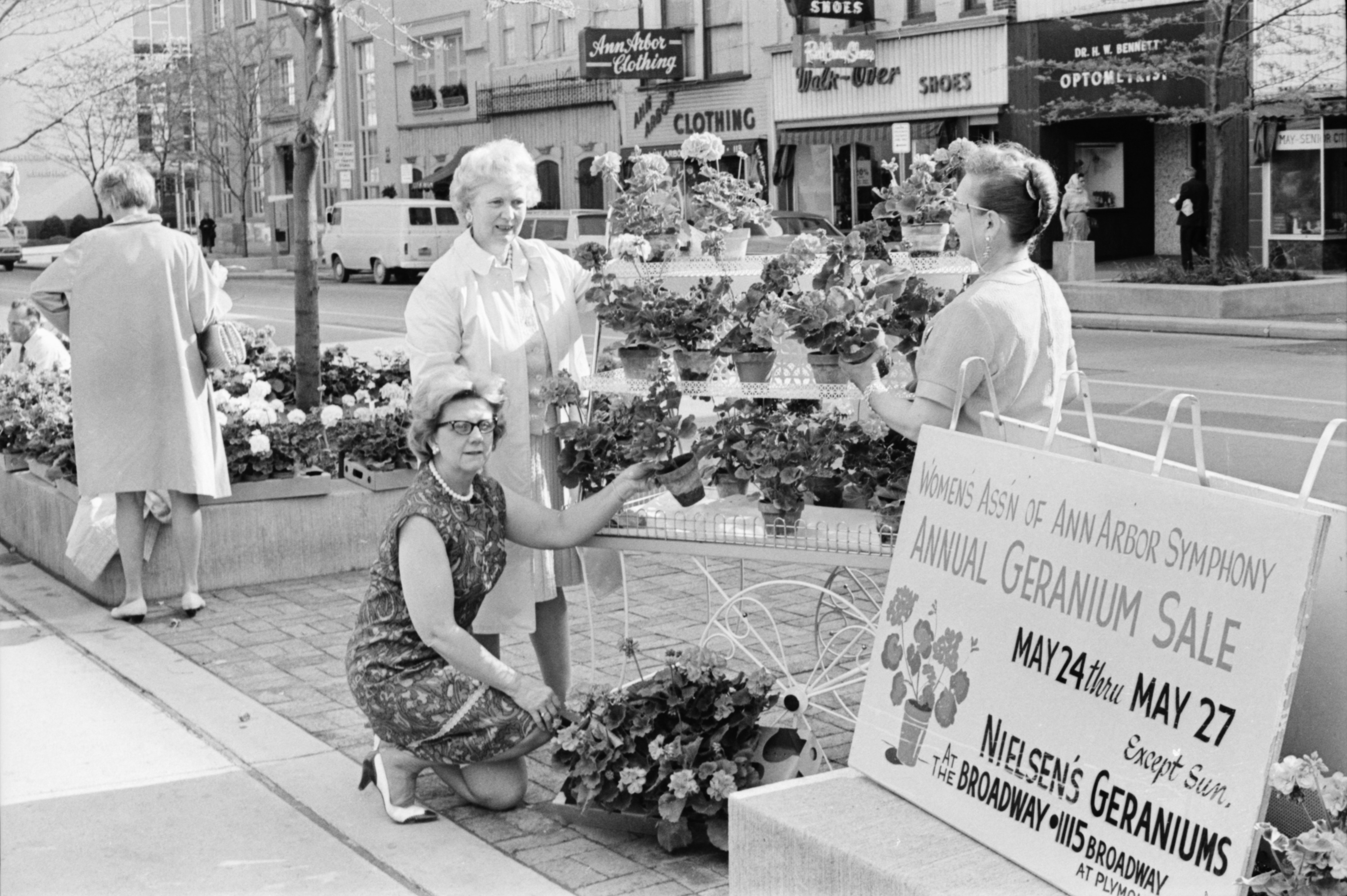 Women's Association of the Ann Arbor Symphony Annual Geranium Sale on Main Street, May 1968 image