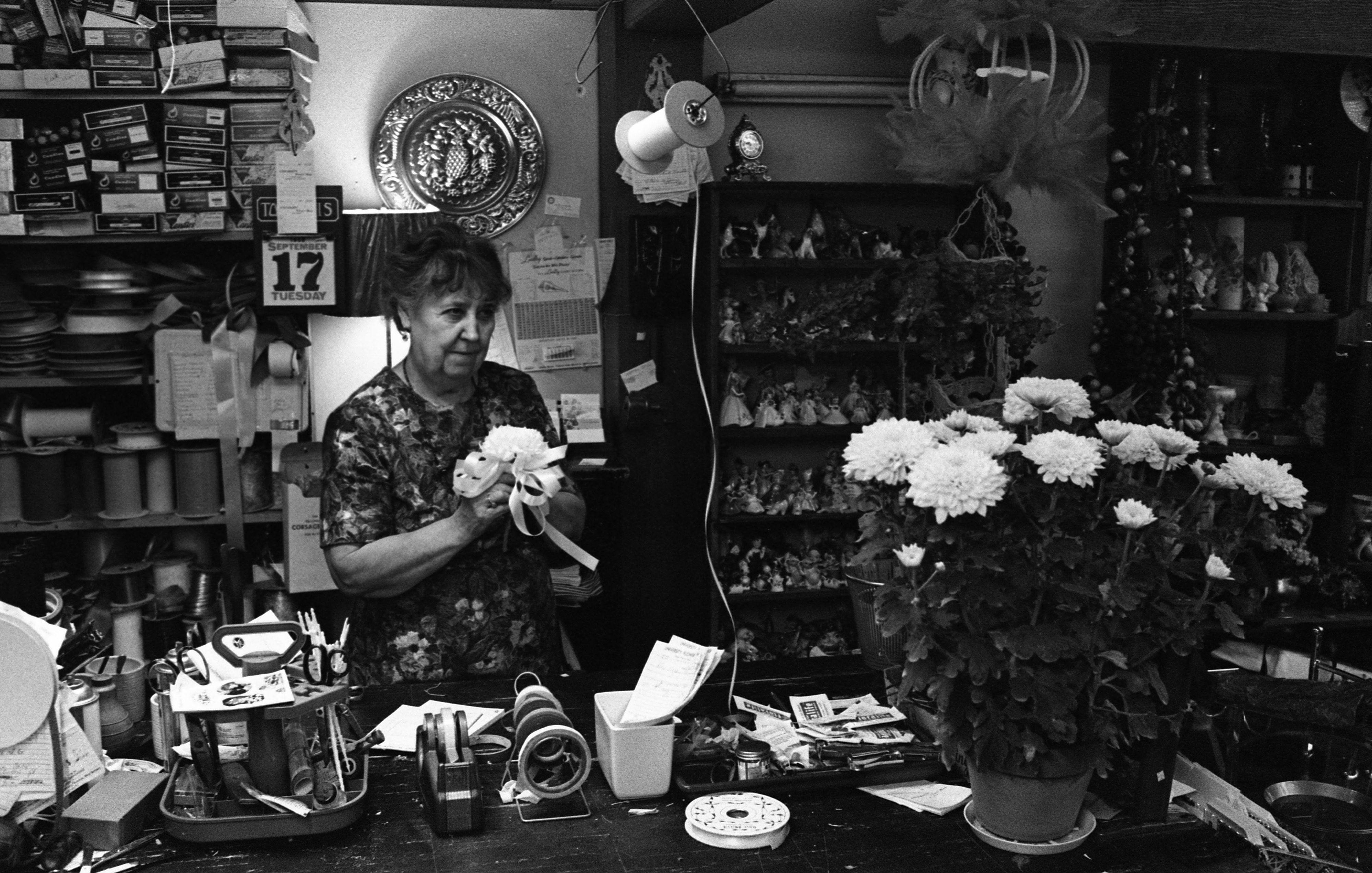 Mrs. Gladys Profok of University Flowers In Nickels Arcade Making Corsages, September 1968 image