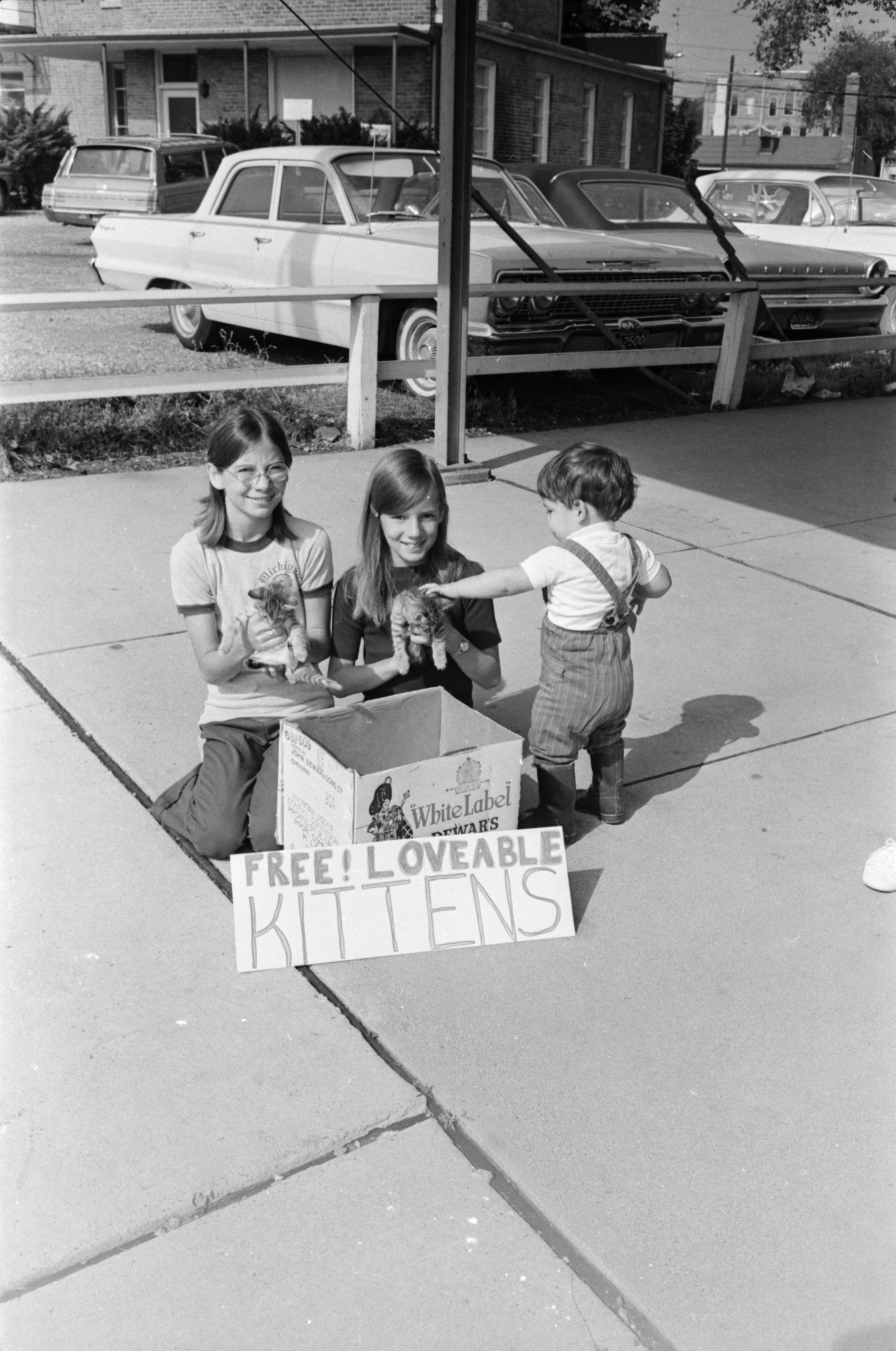 Mary and Barbara Fidler with free kittens at the Farmers Market, August 1969 image