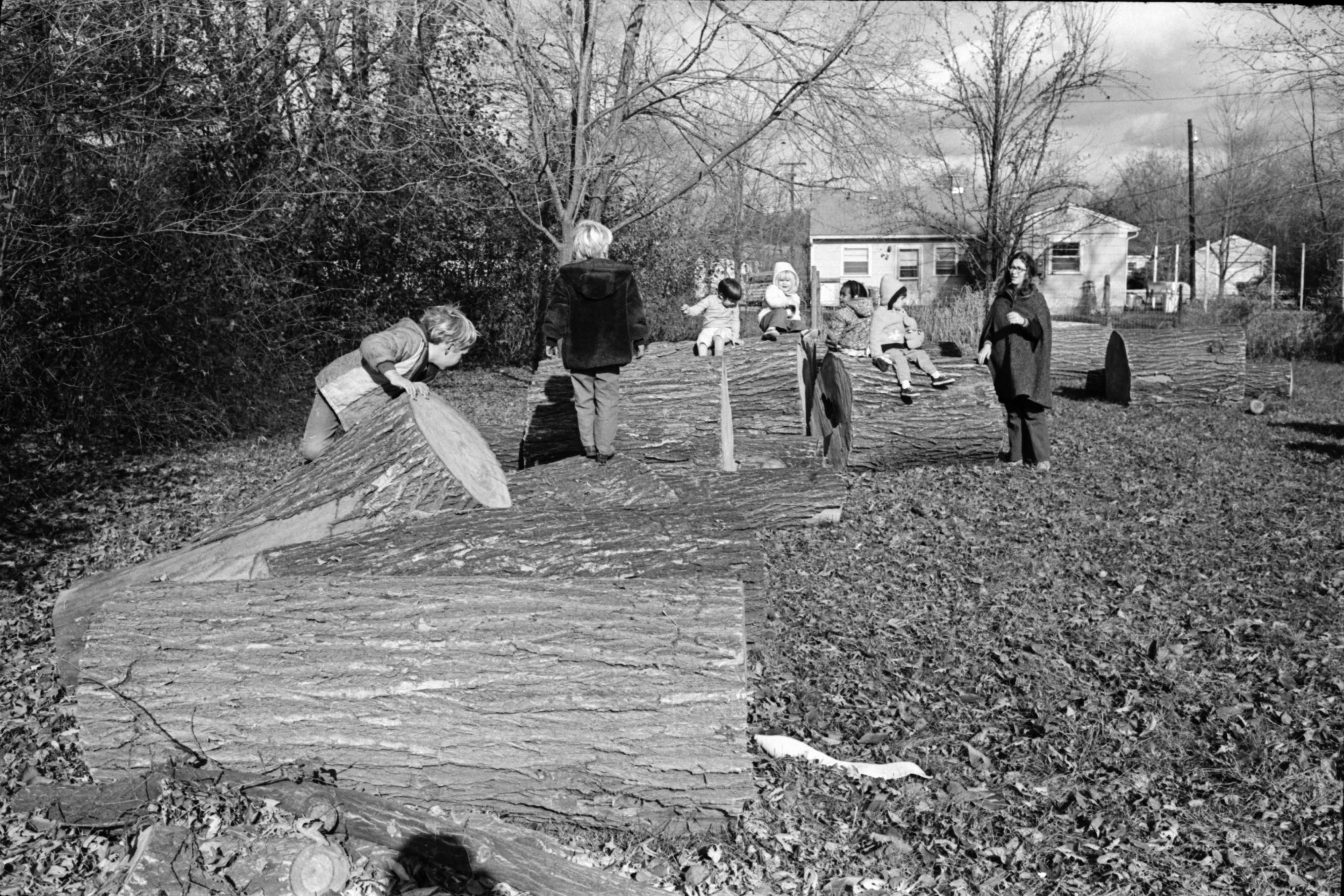 Children Play on Logs, November 1969 image