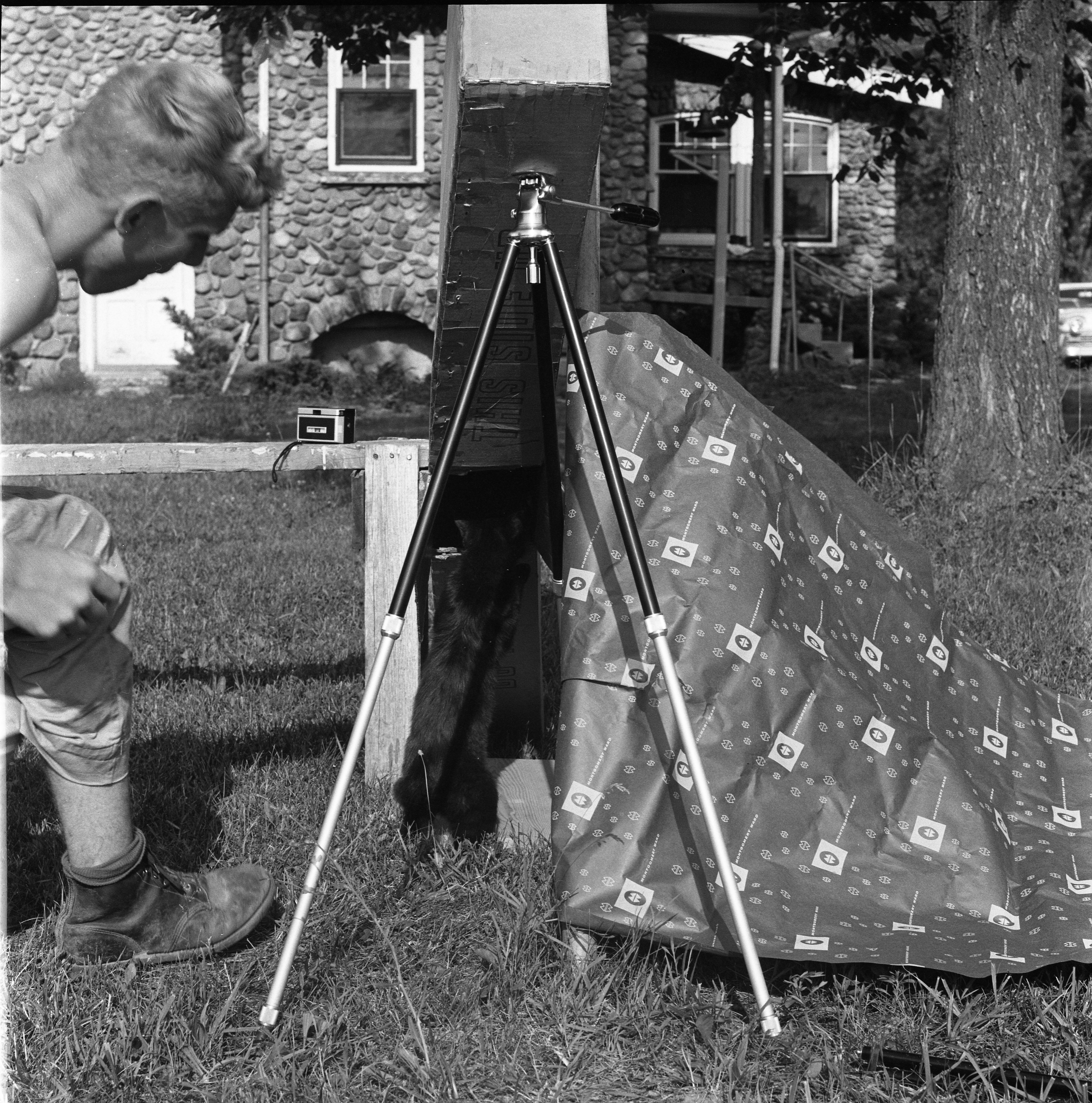 Jim Haven, His Cat, & His Pin Hole Box Used To Observe Solar Eclipse, July 22, 1963 image